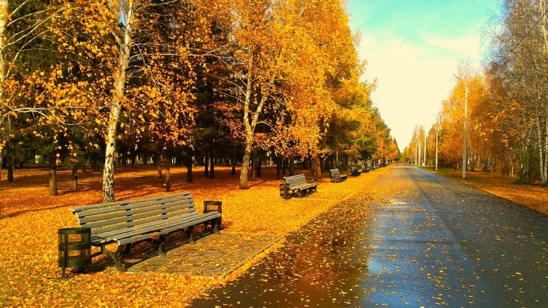 Autumn Wallpaper for Desktop HD