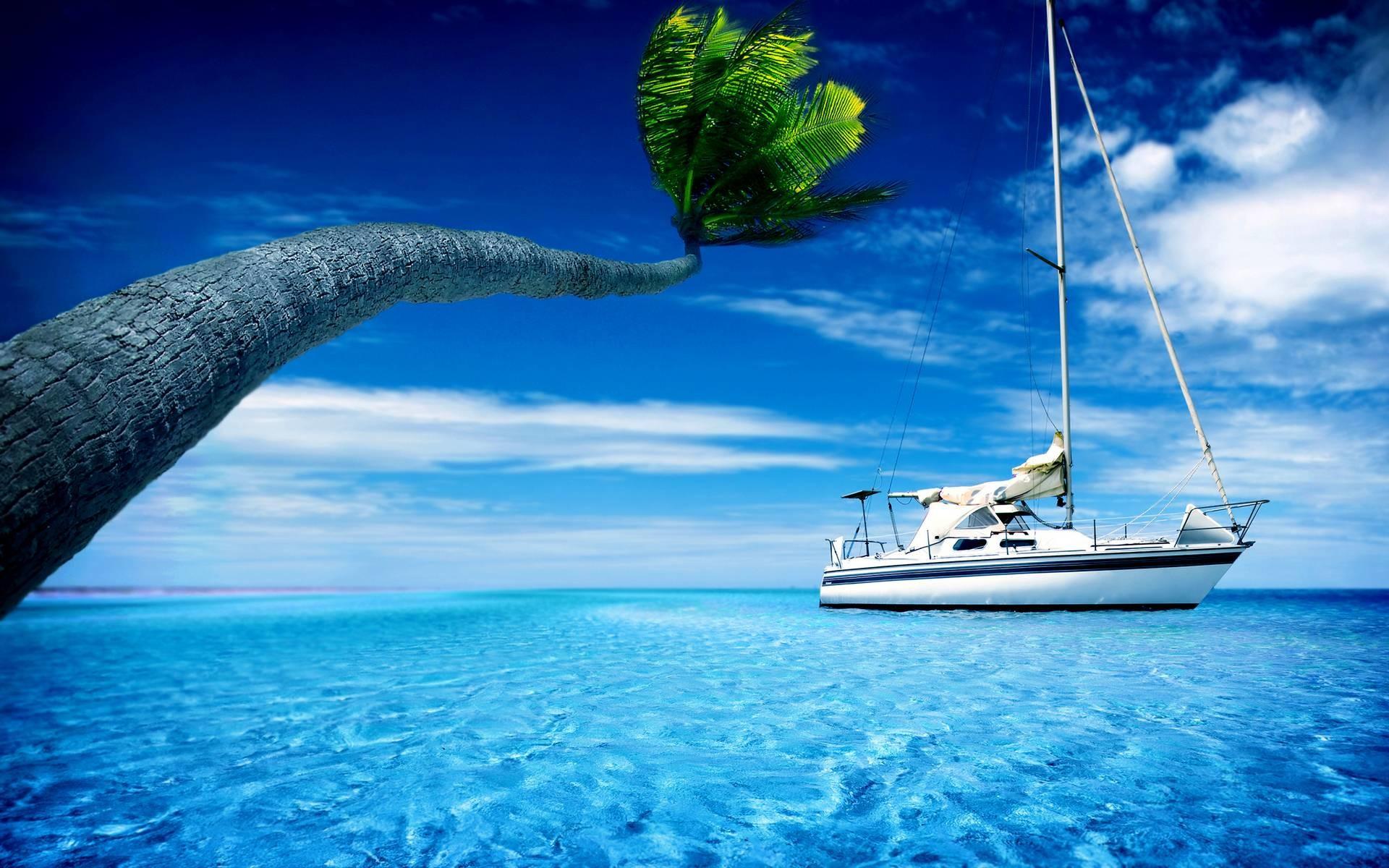 Summer Screensavers Free : Summer Wallpaper Yachts Sky Trees Boat .