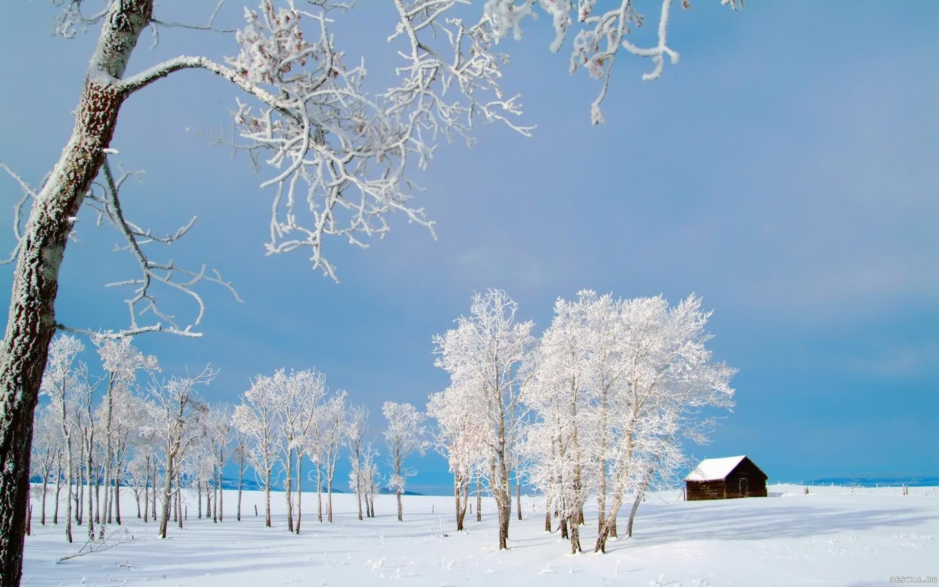 … winter desktops 761771 walldevil; winter wallpapers …