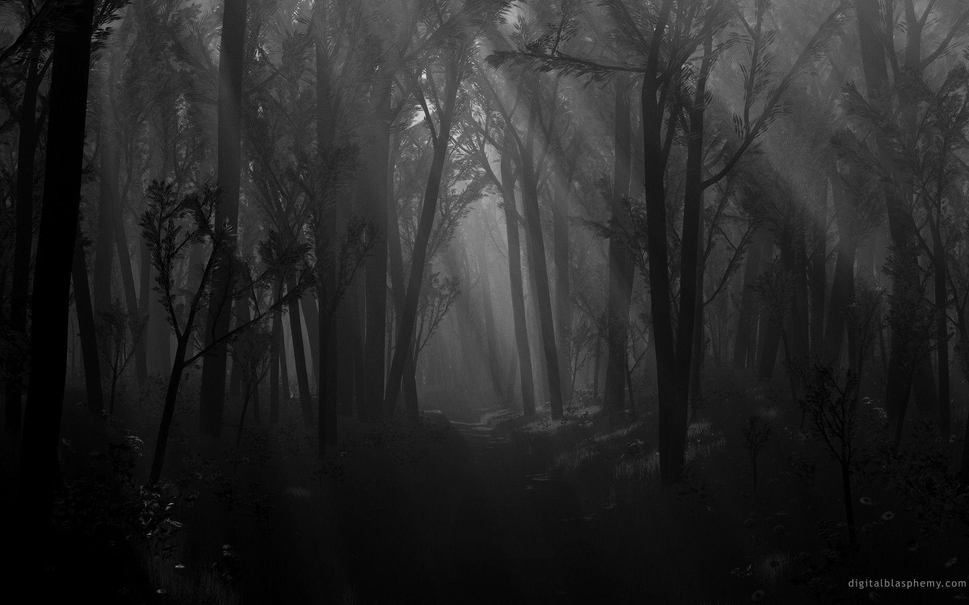 <b>Scary Forest Wallpaper</b> – WallpaperSafari