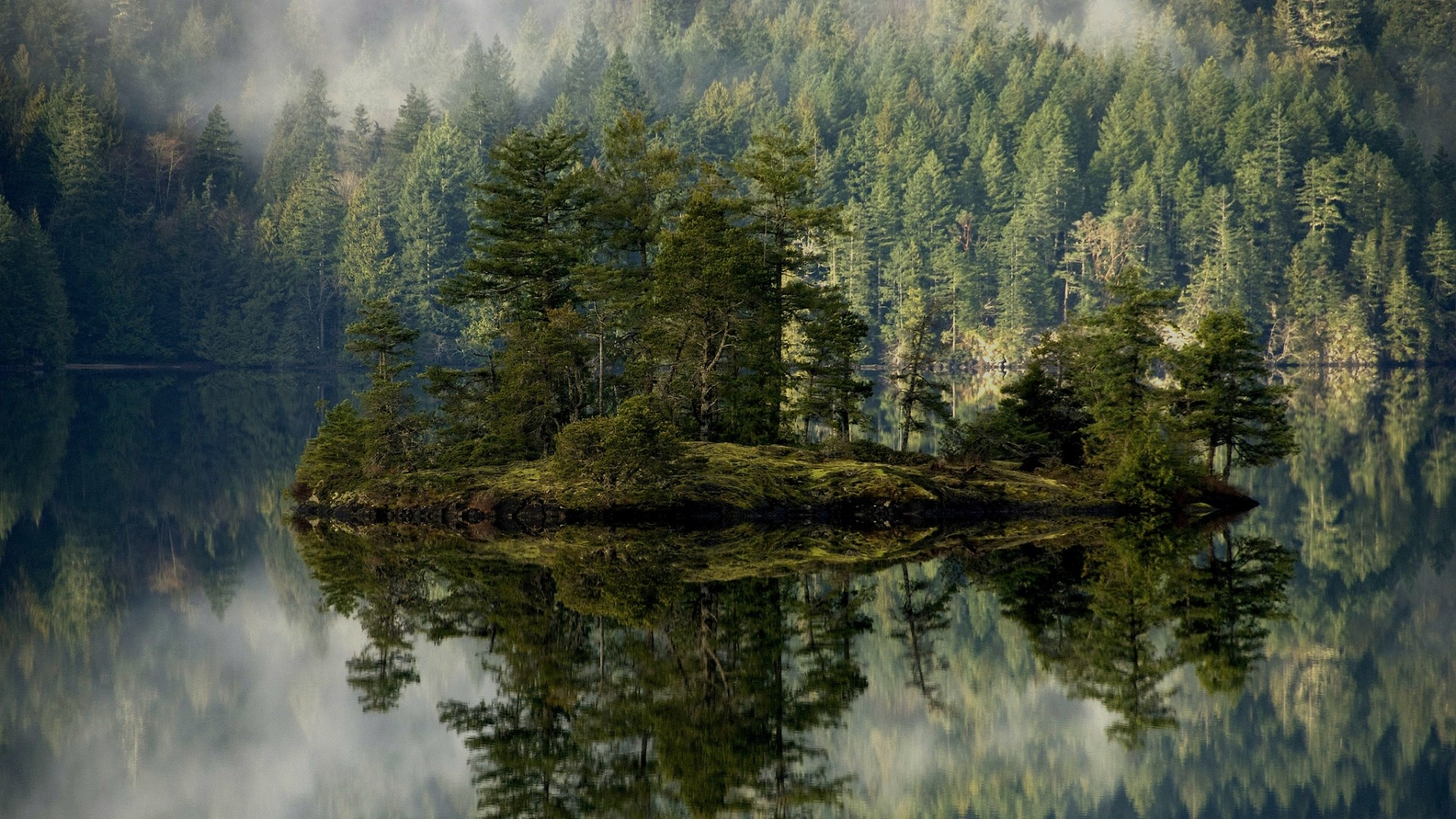 Preview wallpaper forest, lake, reflection, island, mist 1920×1080