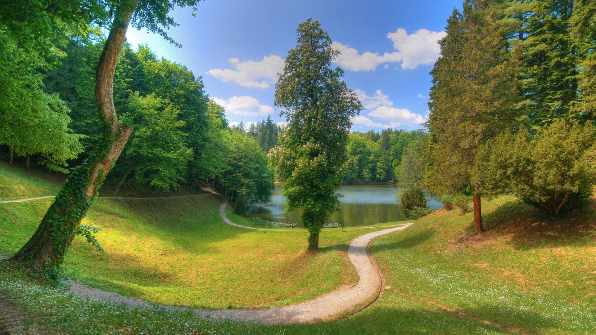 Green <b>Nature Wallpaper</b> Background <b>3d<