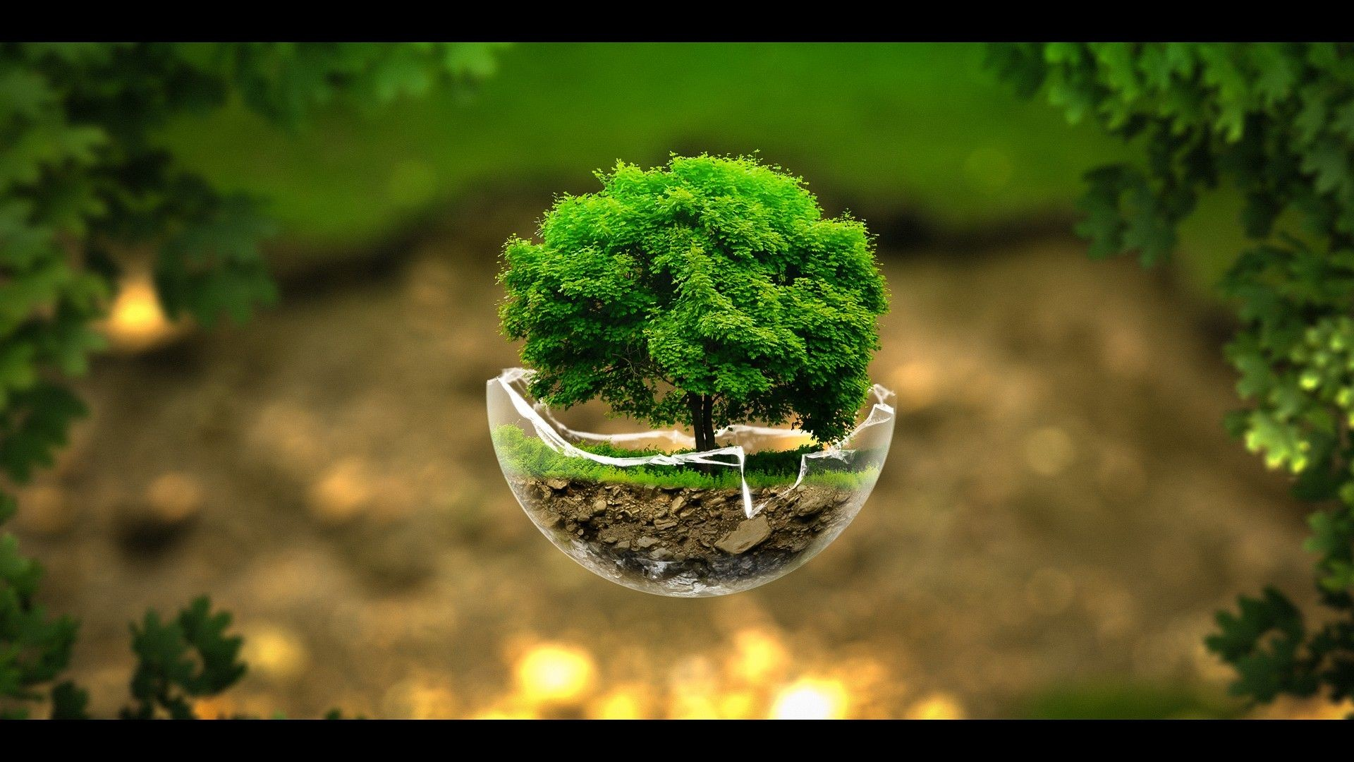 3D HD Nature Wallpapers