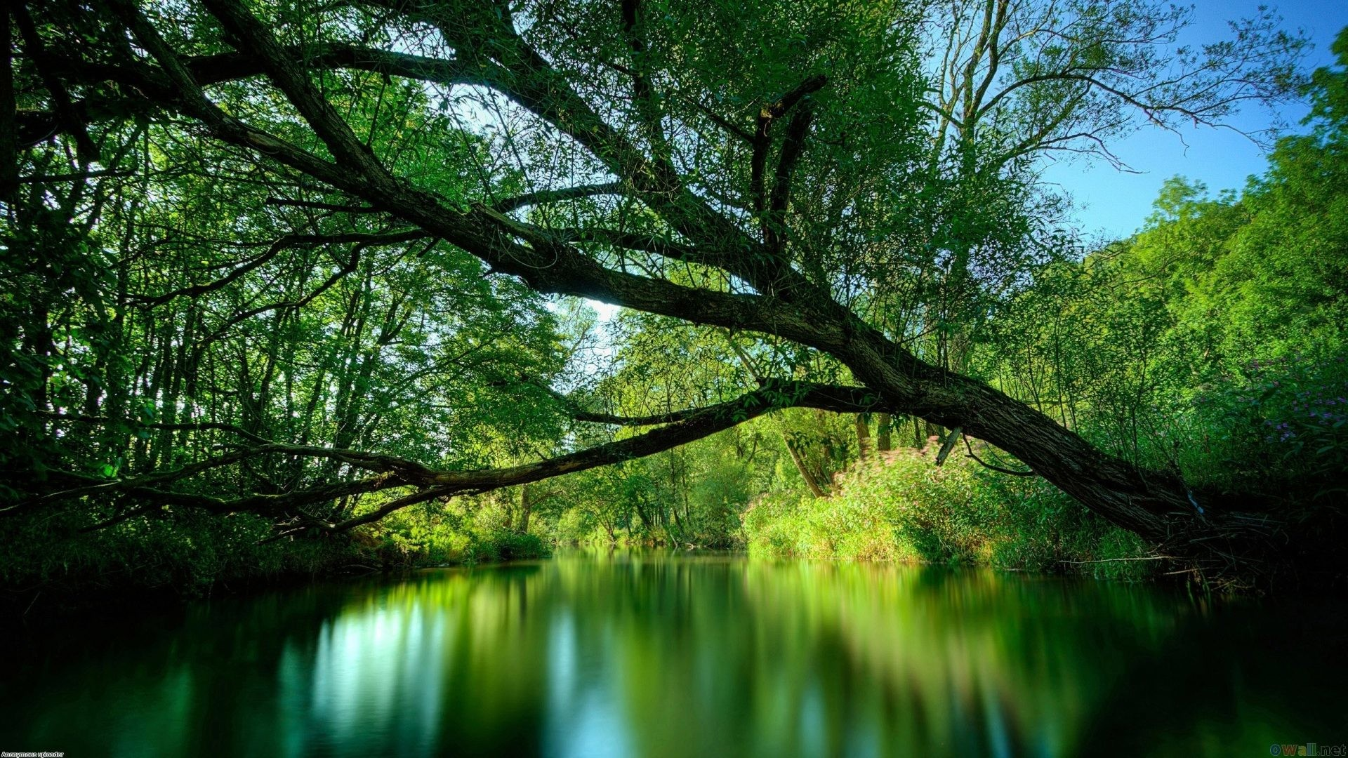 Lakes – Nature Wallpaper For Computer for HD 16:9 High Definition 1080p  900p 720p