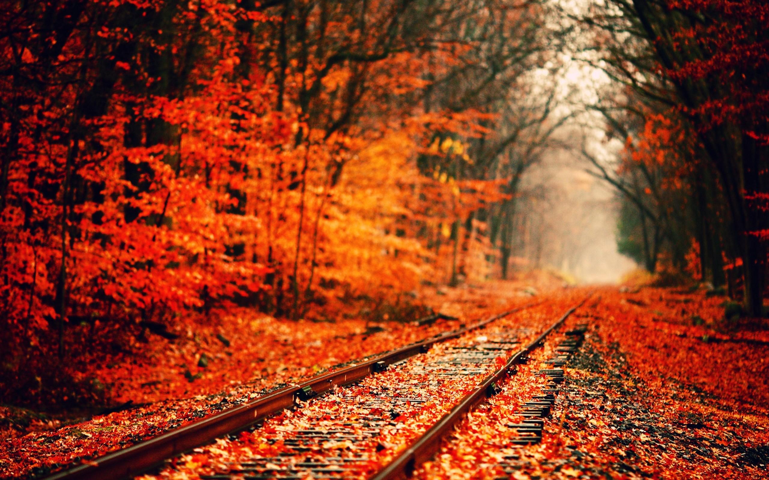 Autumn Wallpapers, Free Desktop Backgrounds – Wallpaper Path