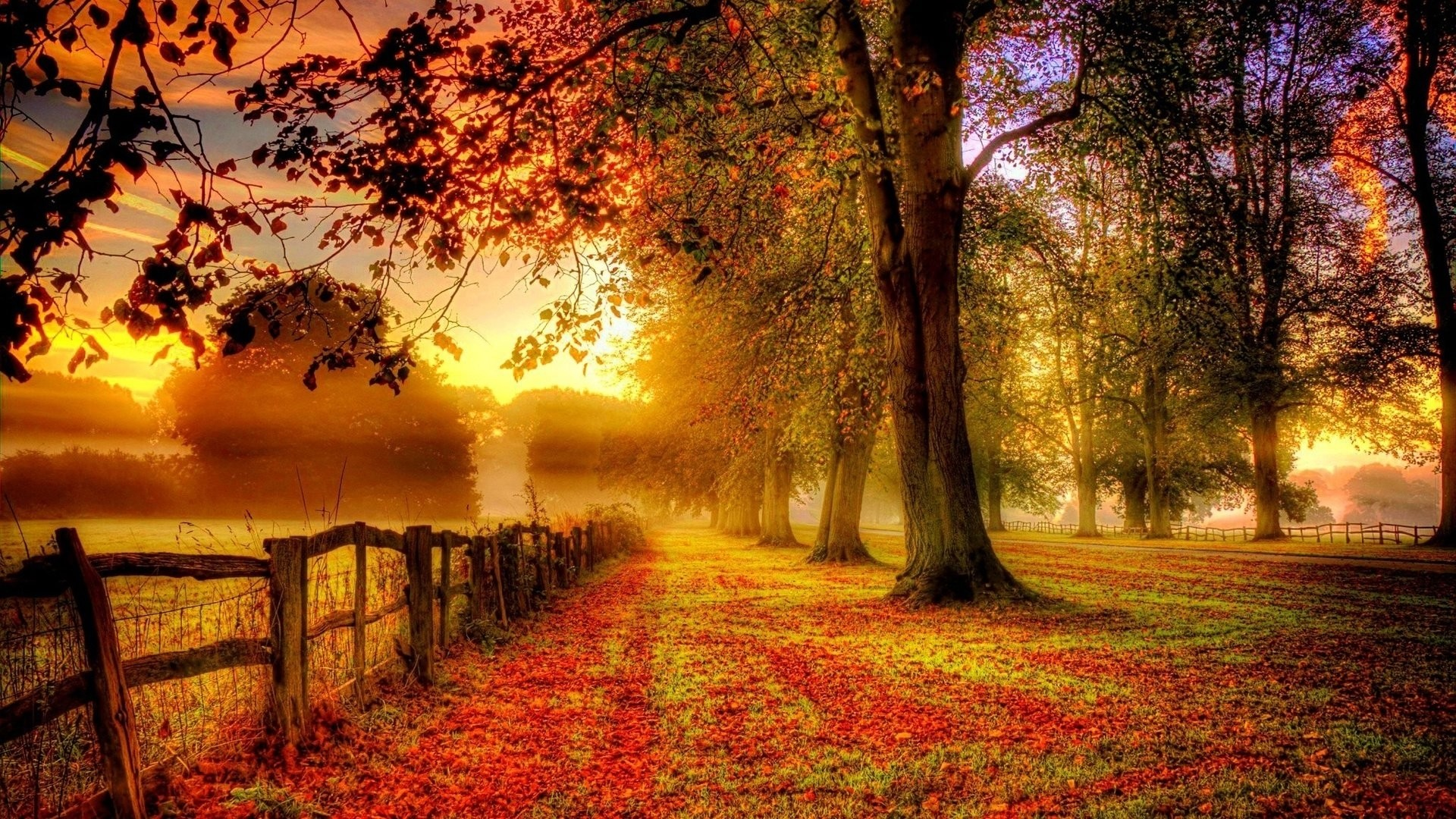 912 Fall Hd Wallpapers   Backgrounds – Wallpaper Abyss pertaining to Fall  Wallpaper