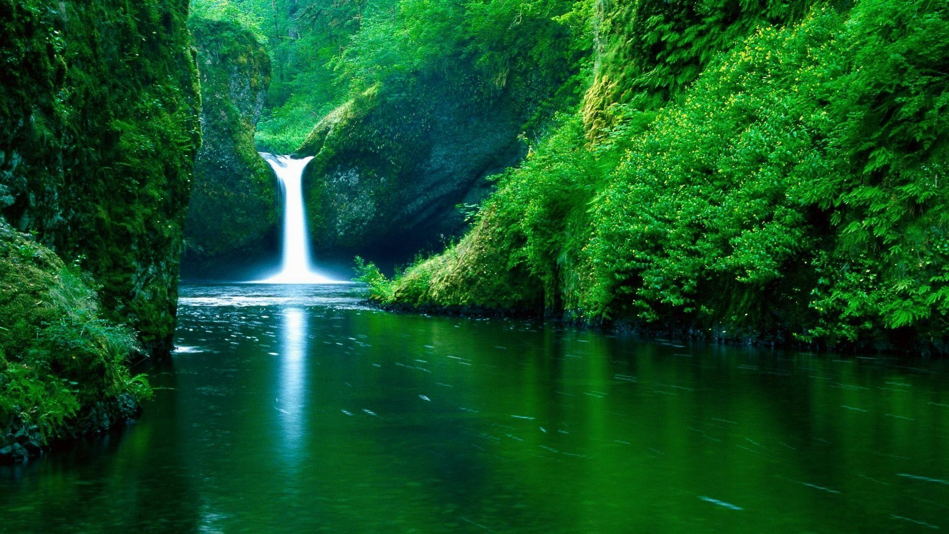 4. cool-nature-wallpapers-HD4-600×338