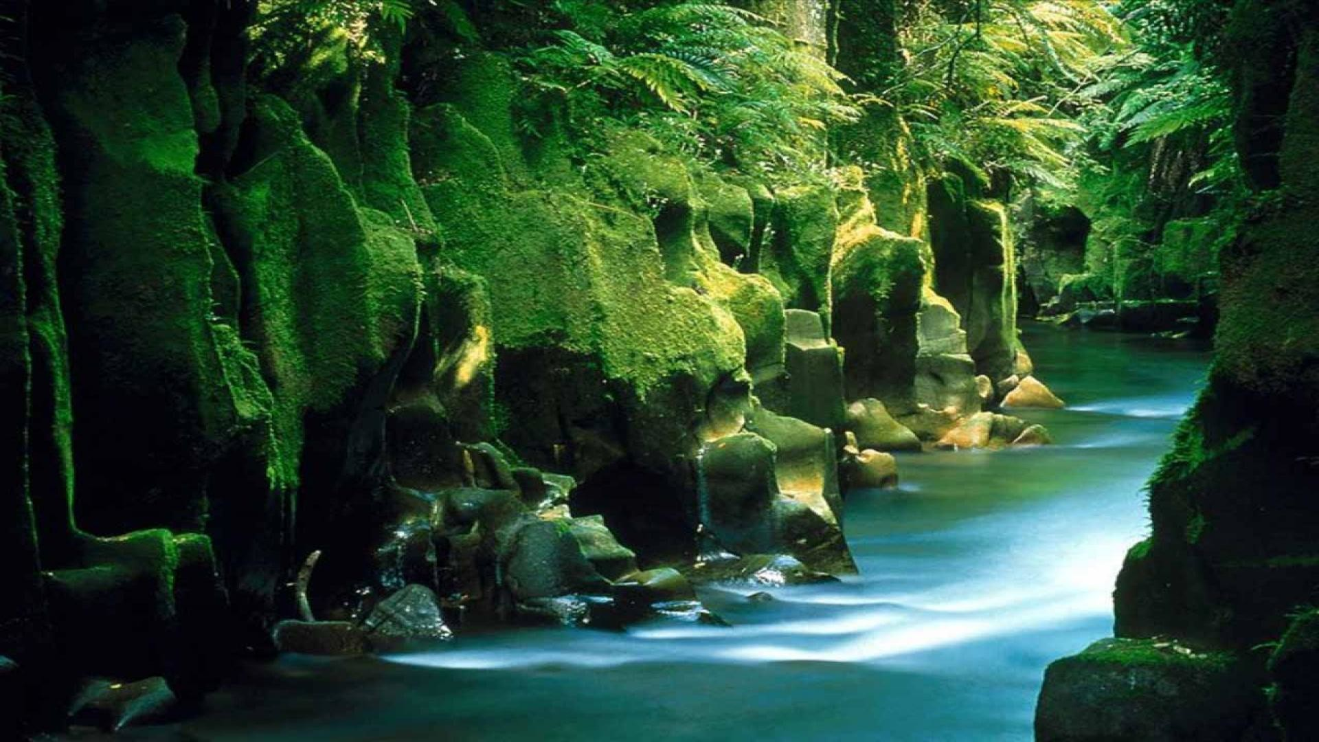nature HD Wallpapers Nature Landscape Wallpapers .