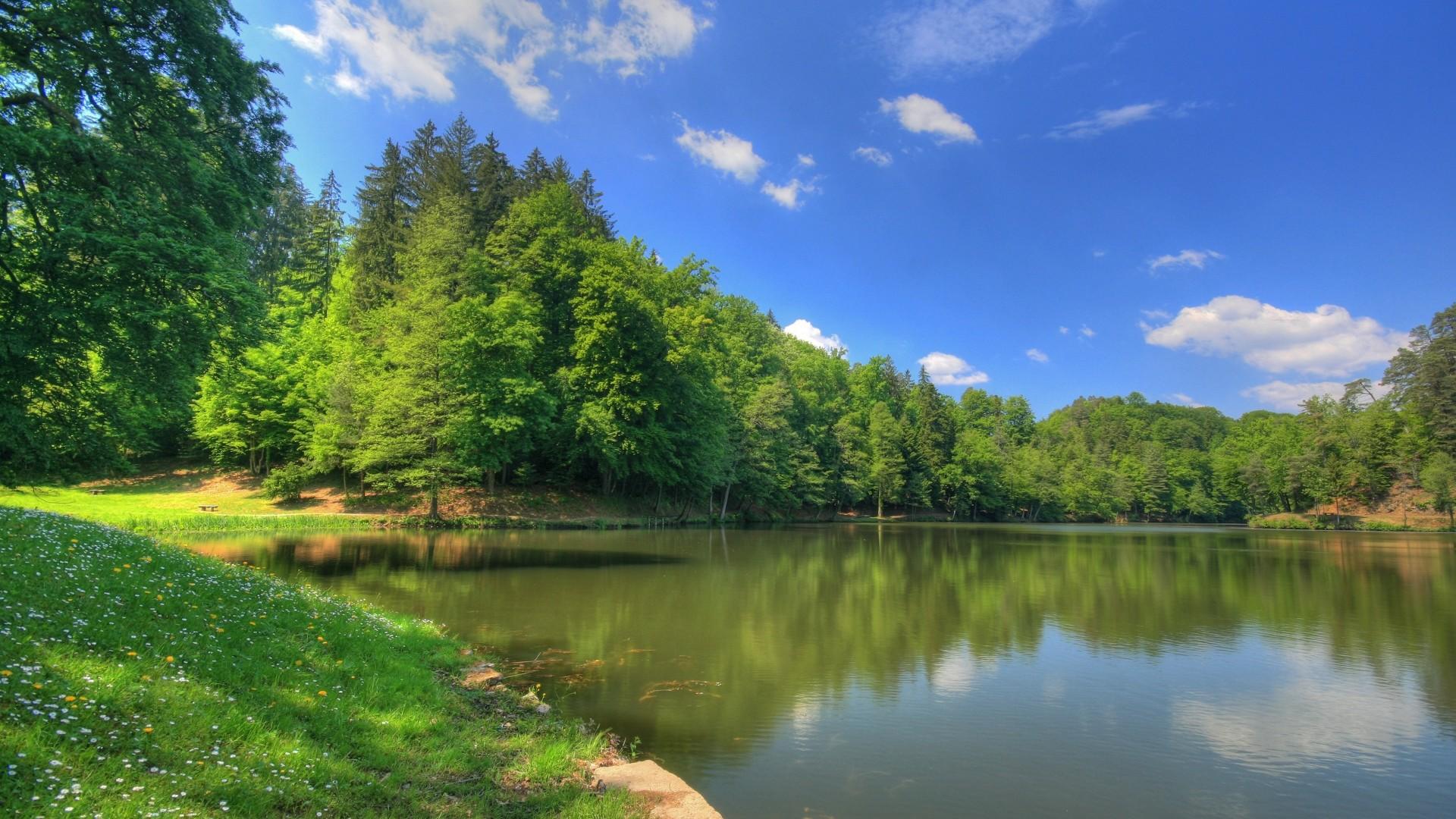 Wallpapers Scenery Hd Water Tree Nature | #1805328 #scenery