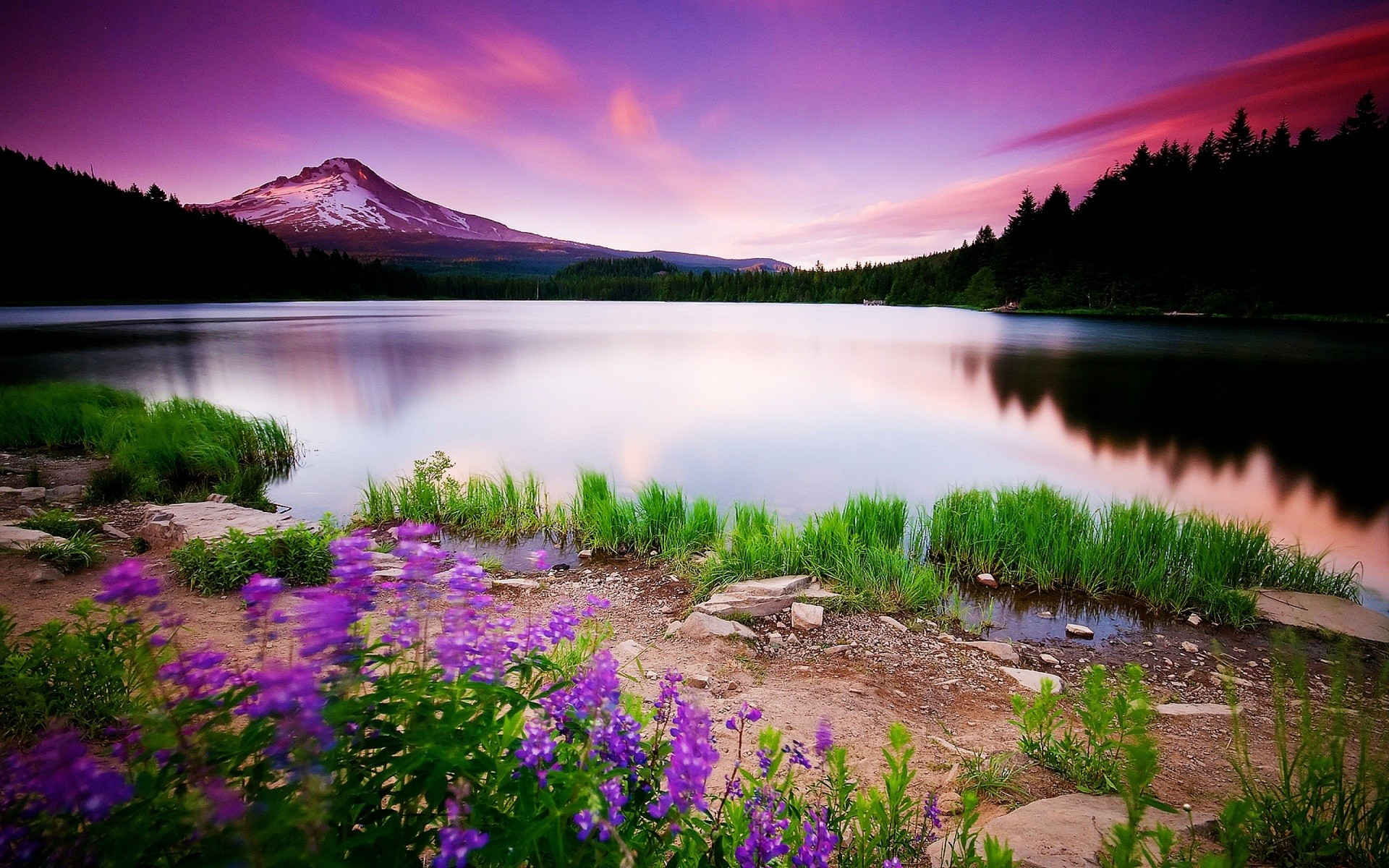 Page 3: Full HD 1080p <b>Spring Wallpapers</b> HD
