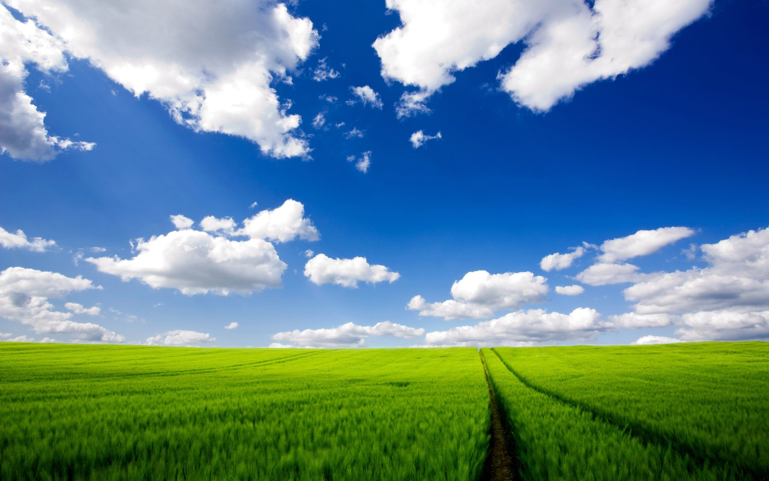 wallpaper.wiki-Cloudy-Sky-Background-for-PC-PIC-