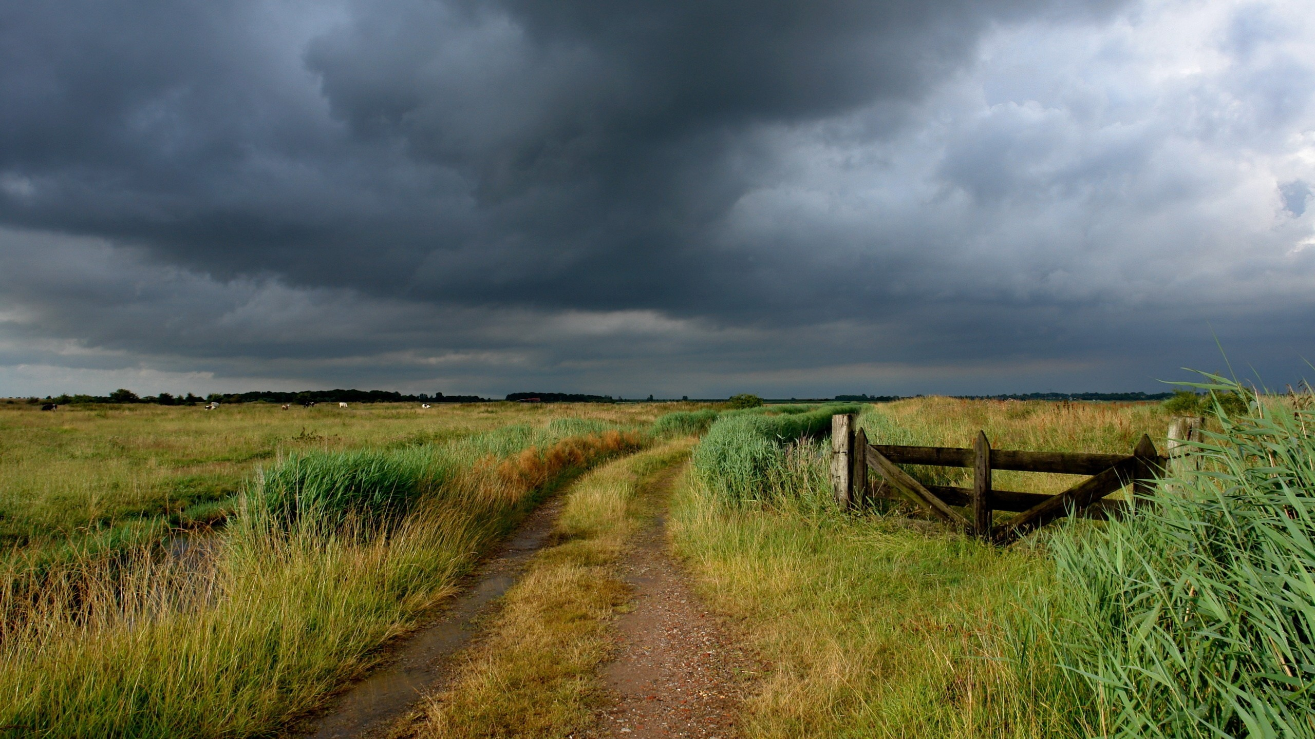 Wallpaper road, field, country, gate, pasture, cloudy, clouds,