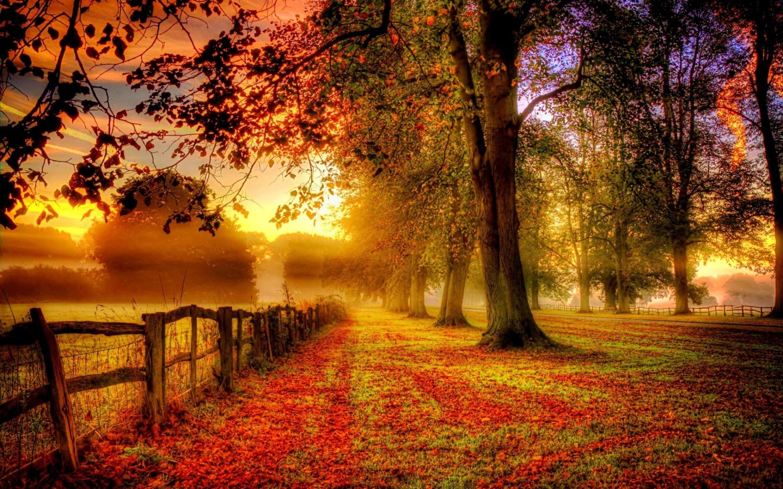 Fall Nature Screensavers – 1638178