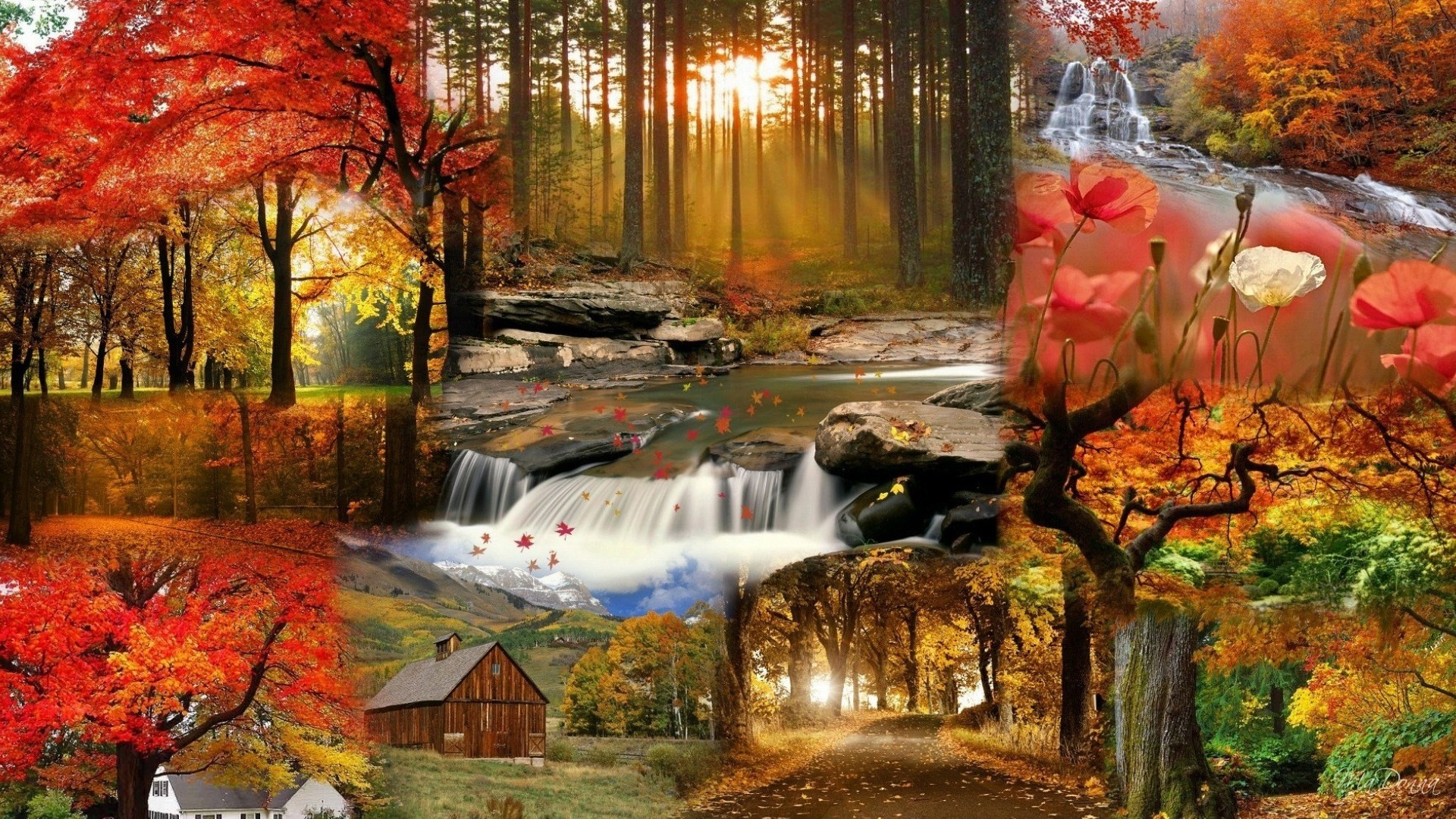 #1517900, fall category – free wallpaper and screensavers for fall