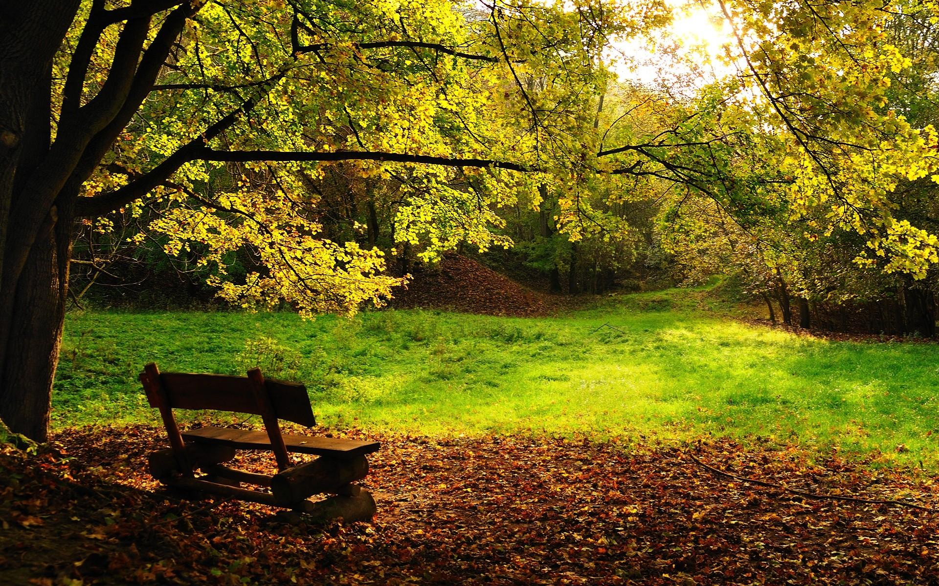beautiful nature wallpapers for desktop fall IMGUST