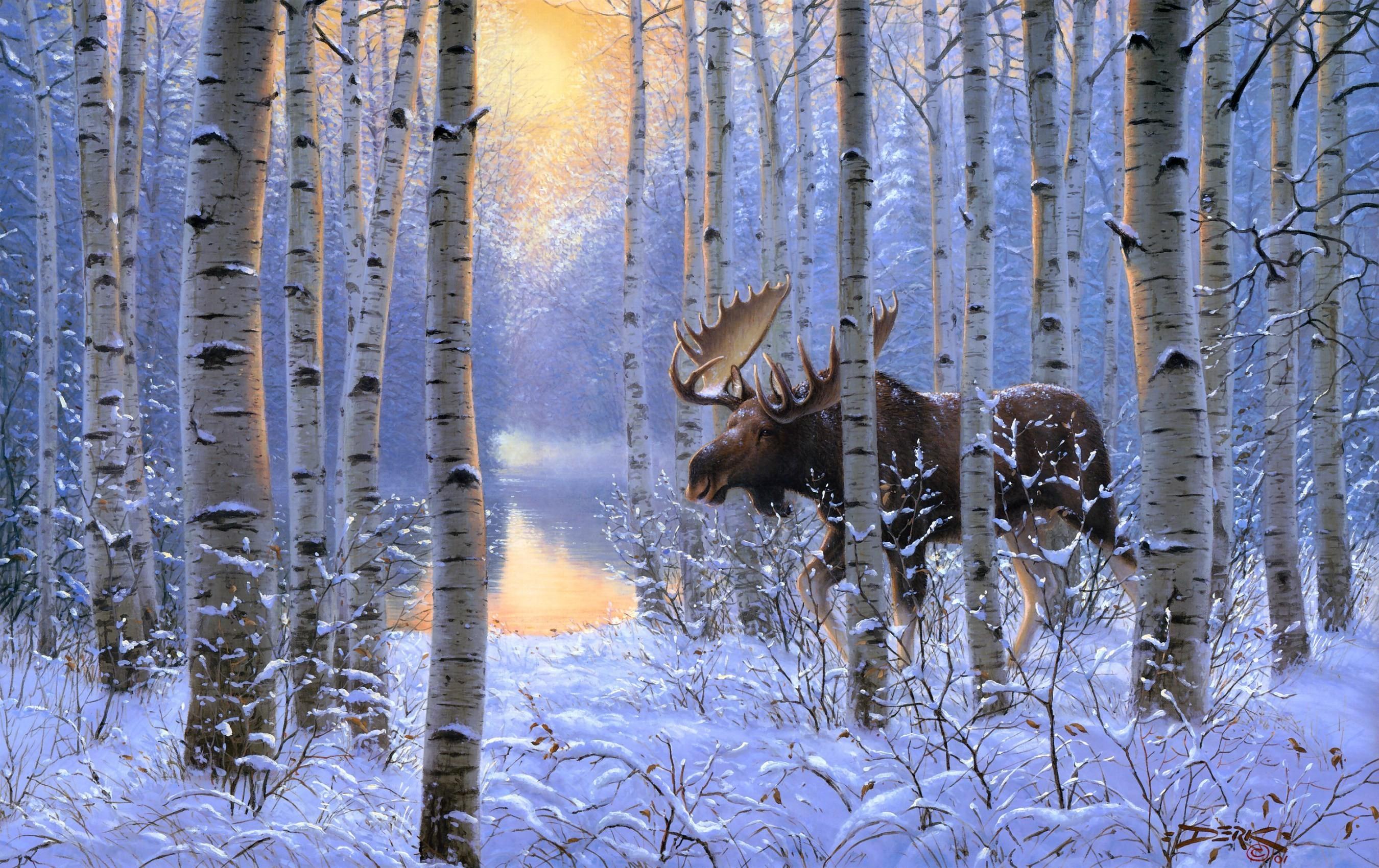 <b>Snowy</b> Trees <b>Wallpaper</b