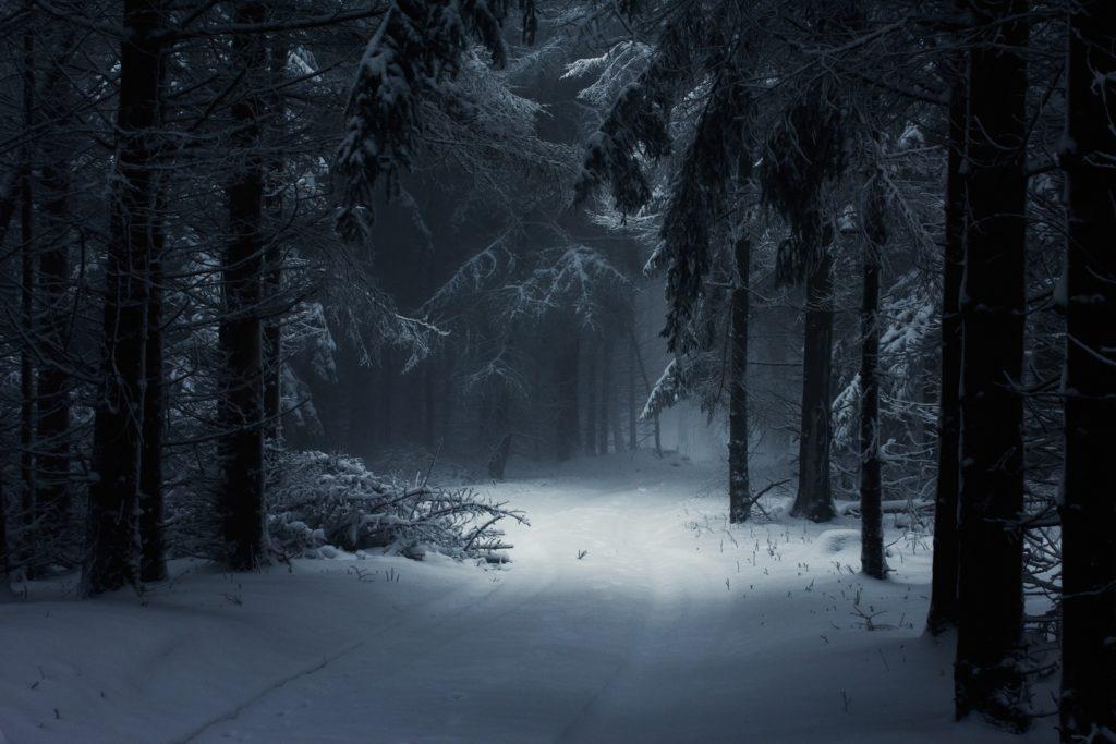 Fall Winter Wallpaper Background – WallpaperSafari