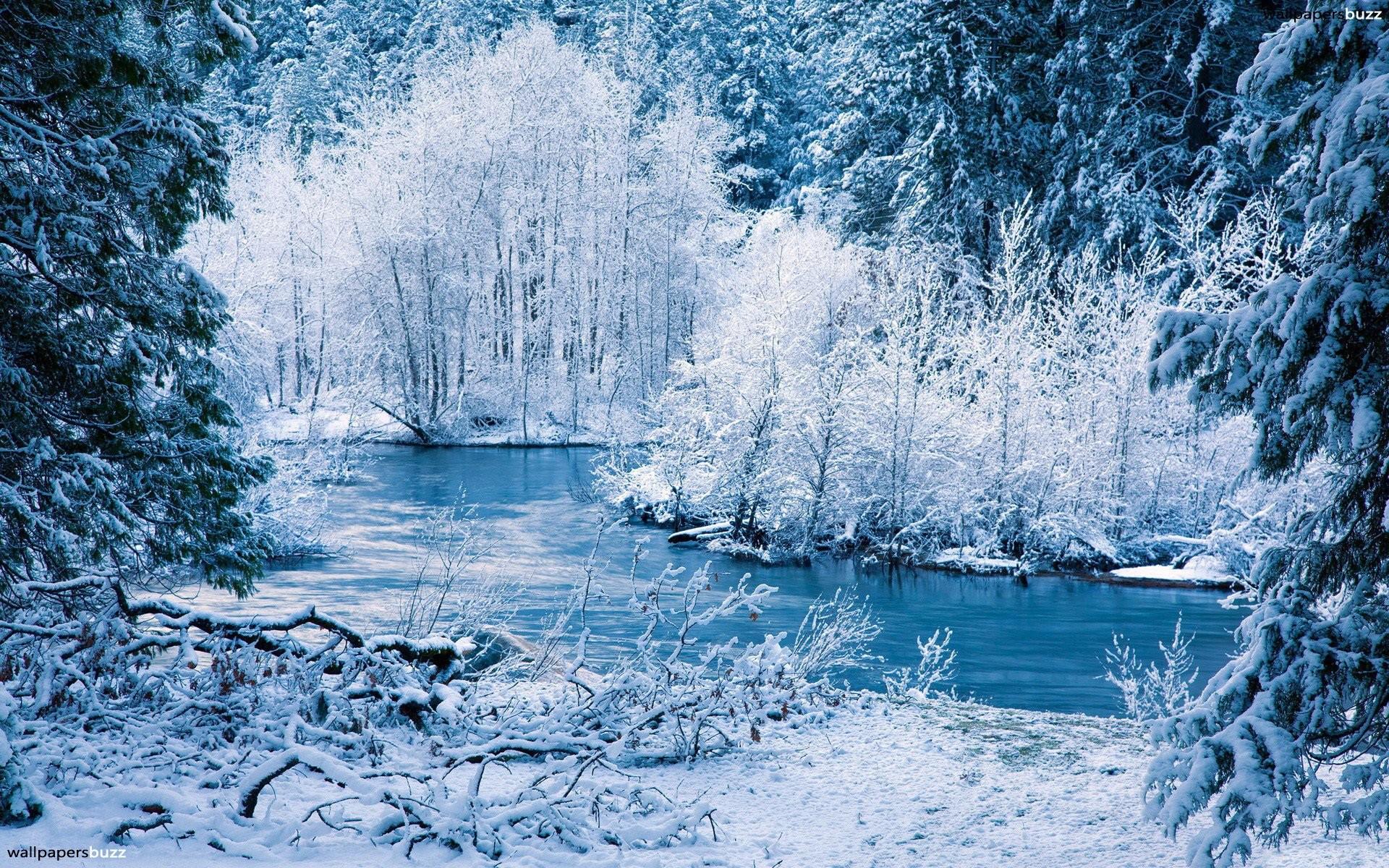 Winter Forest River Wallpaper 964 1920 x 1200 – WallpaperLayer.com