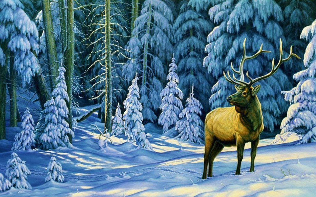 reindeer standing in north America winter forest photograph