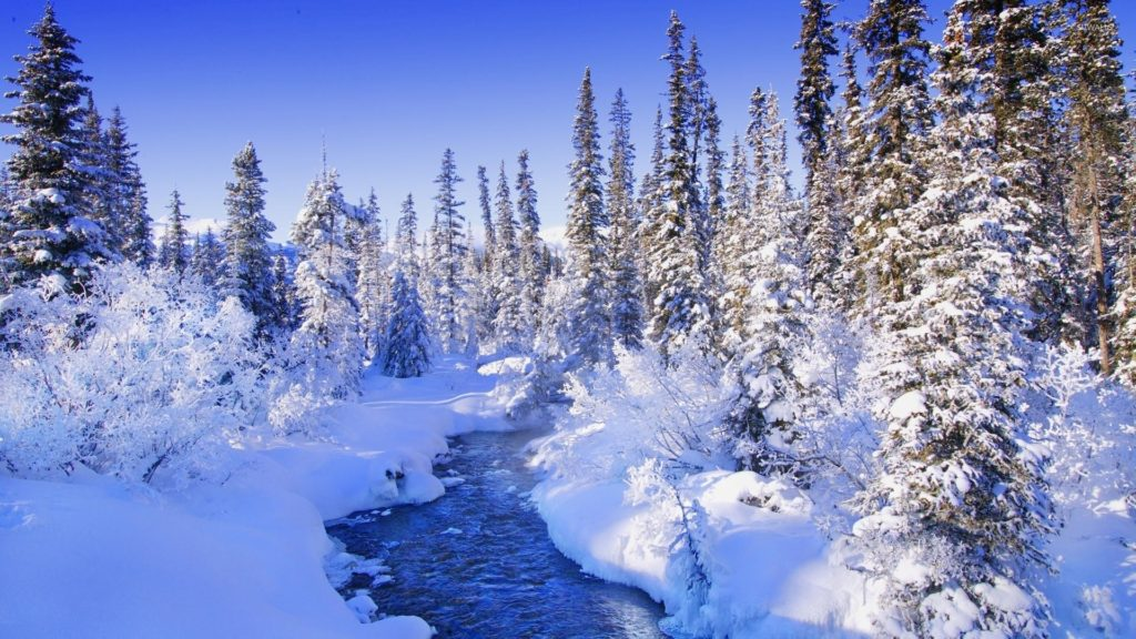 Steamy river by the snowy forest wallpaper – Nature wallpapers .