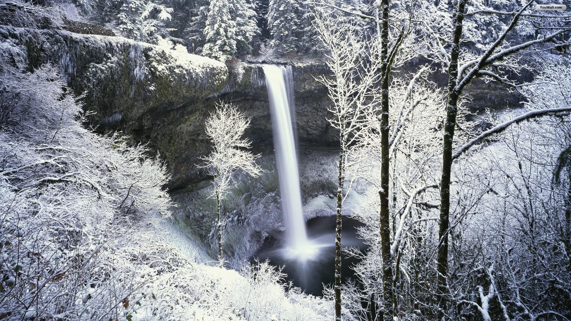 Snowy Forest Waterfall Wallpaper