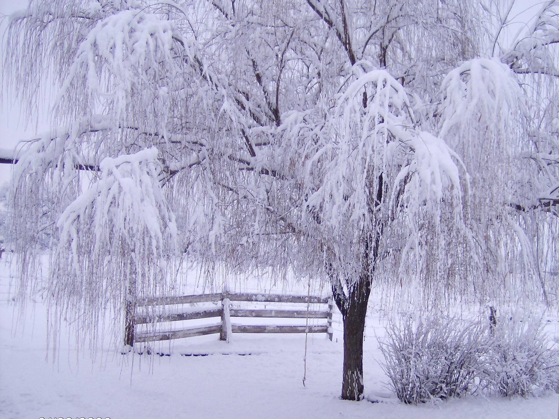 Winter Screensavers 10 Backgrounds | Wallruru.