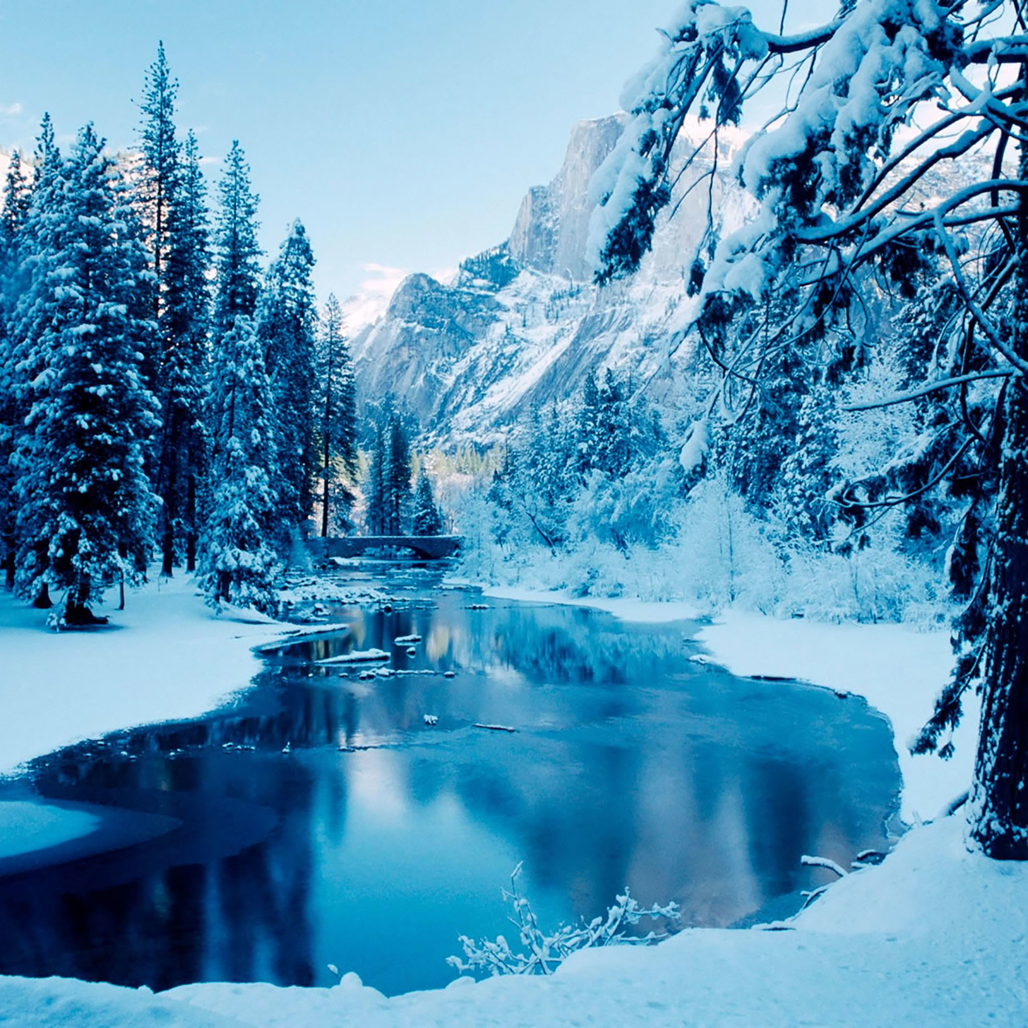 Winter iPad Wallpaper 12
