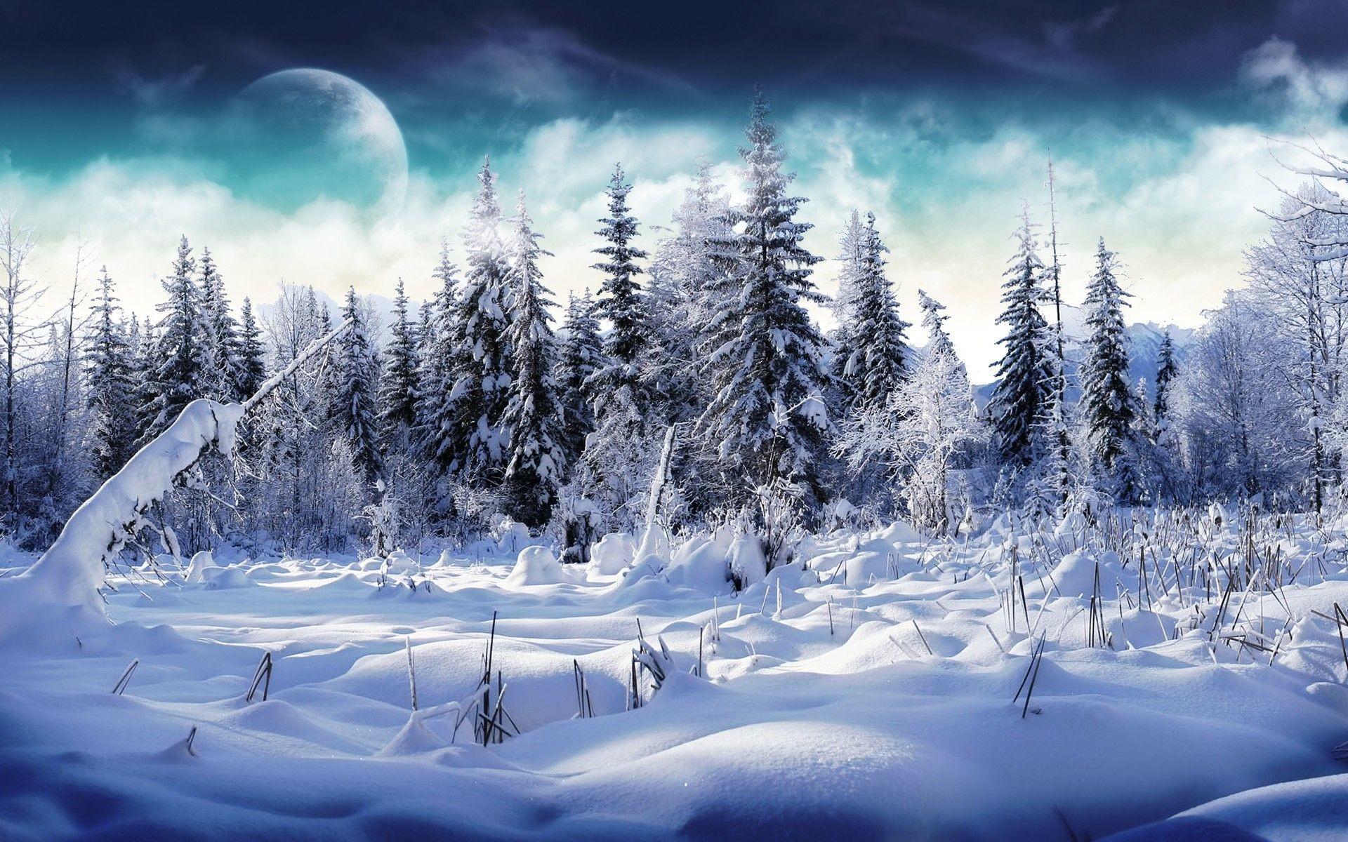 … free winter wallpaper and screensavers 1 …