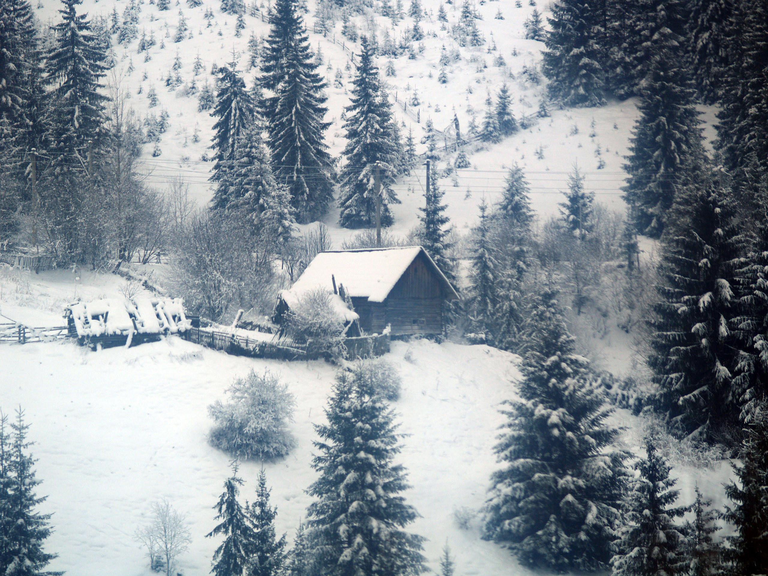 Winter – landscape wallpaper