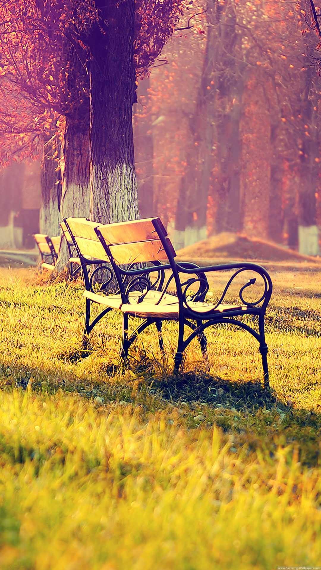 Bench In The Park Autumn Landscape iPhone 6 Plus HD Wallpaper