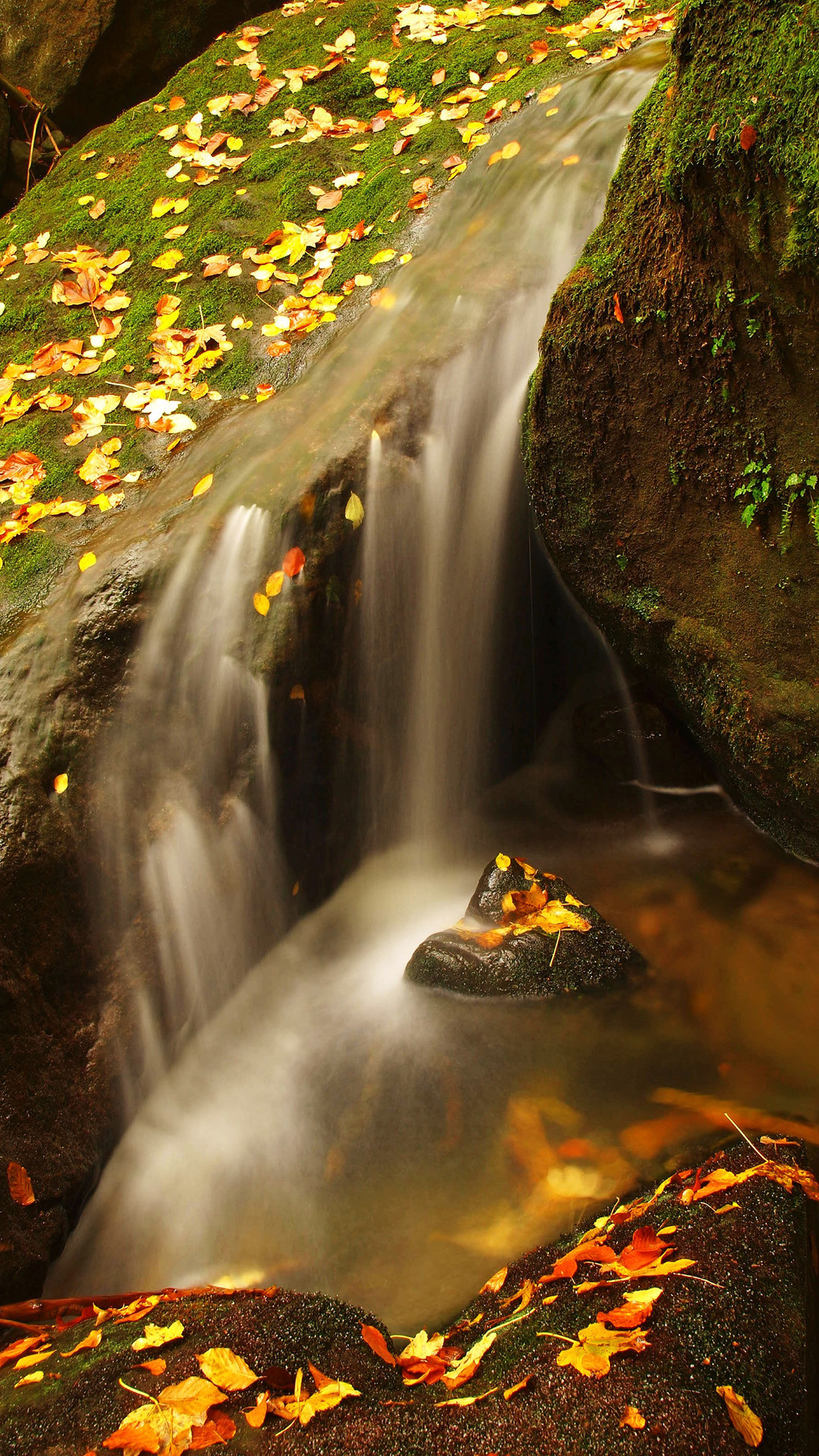 … Wallpaper Weekends: Fall has Dell – Autumn Wallpapers for the iPhone
