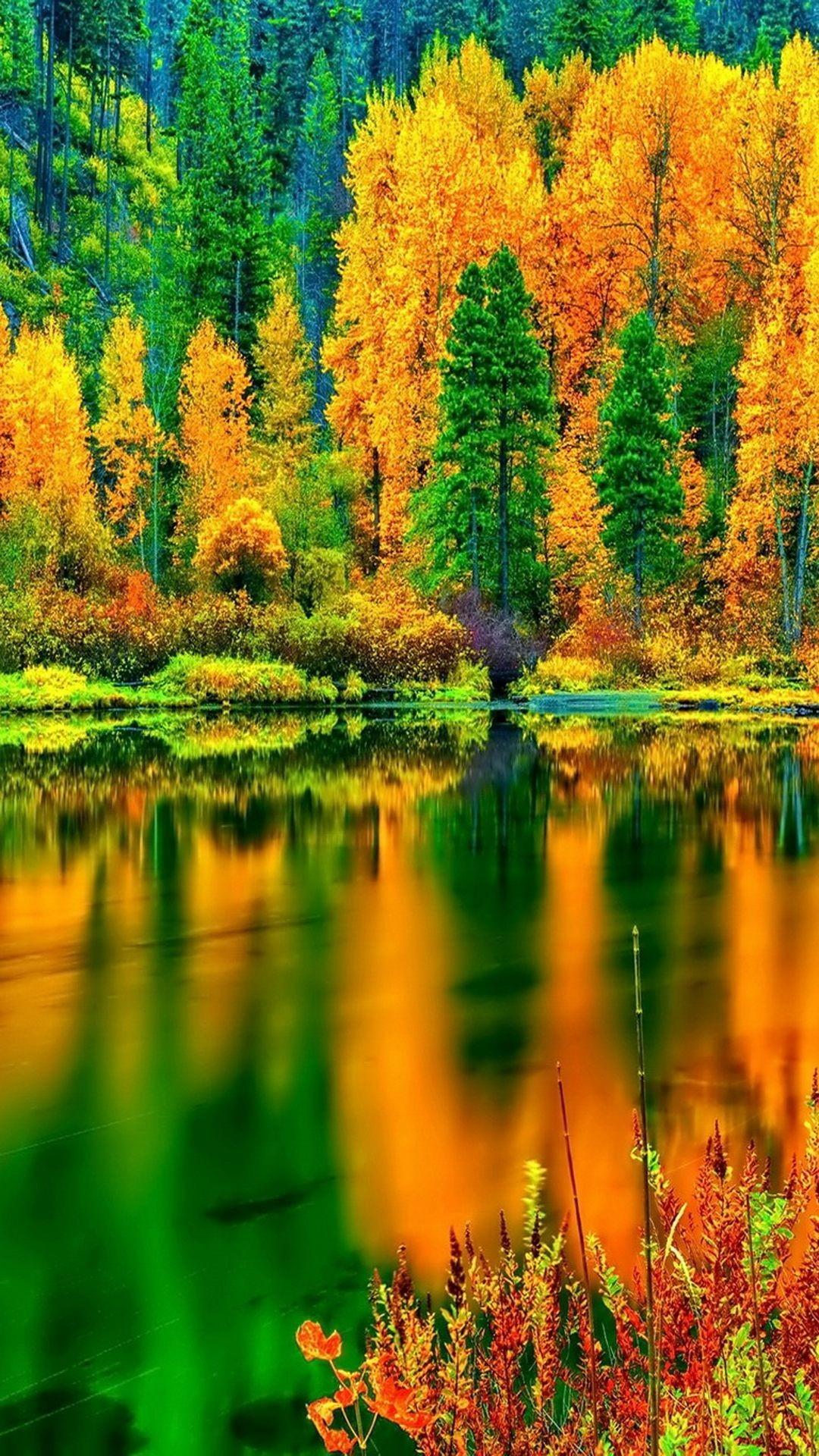 Nature/Landscape Autumn Lake iPhone 6 Plus Wallpapers – autumn lake, hd iPhone  6 Plus Wallpapers – autumn: You should have these iPhone 6 Plus wallpaper  …