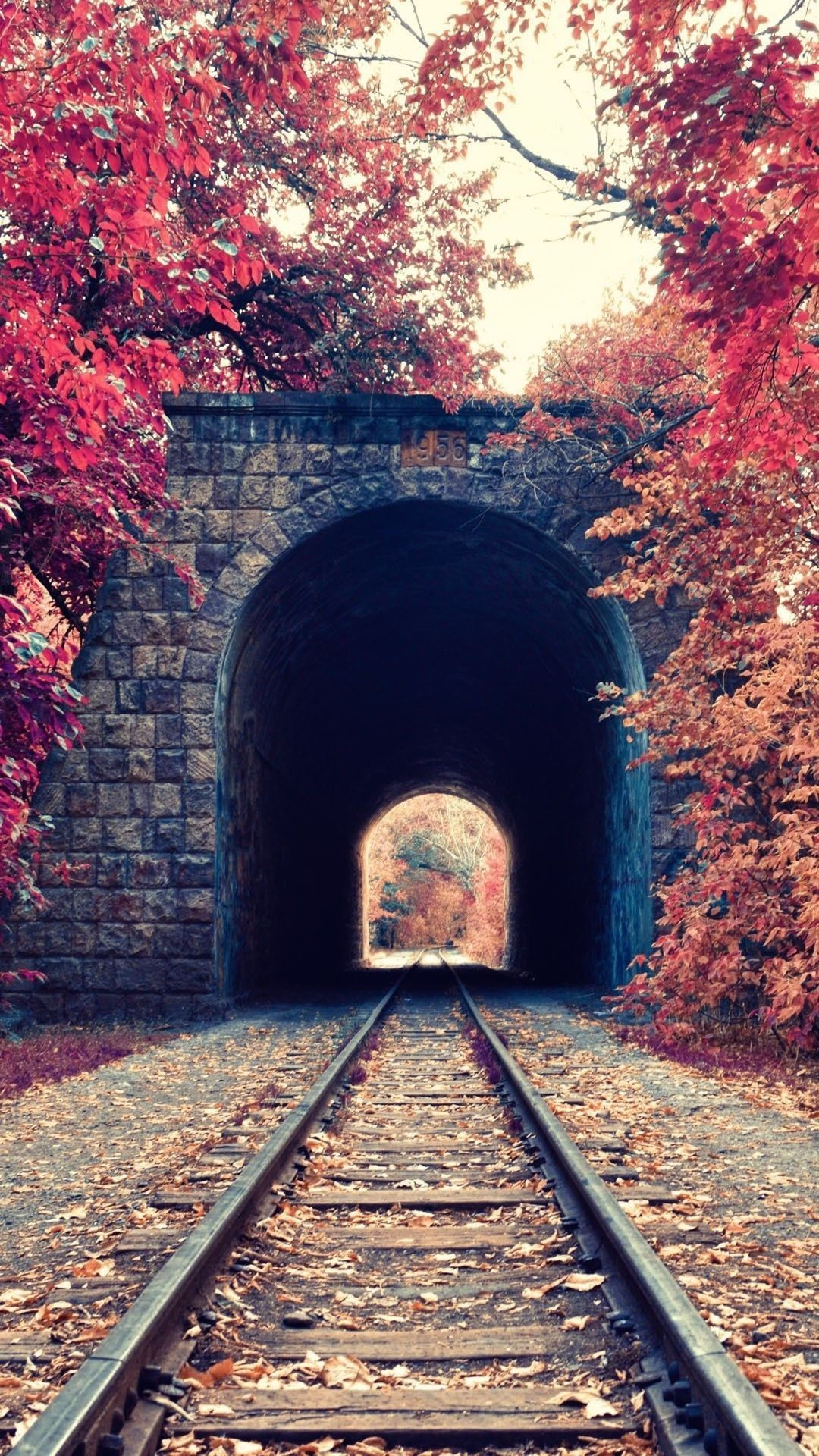 Autumn Train Tunnel Red Tree Leaves iPhone 6 Plus HD Wallpaper