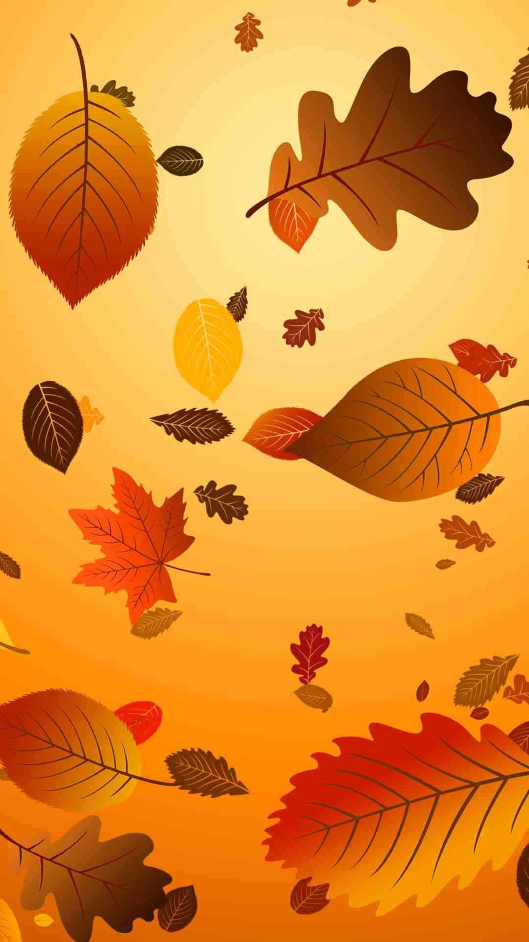 Which 2015 Thanksgiving iphone 6 plus wallpaper do you like ? – Fashion Blog