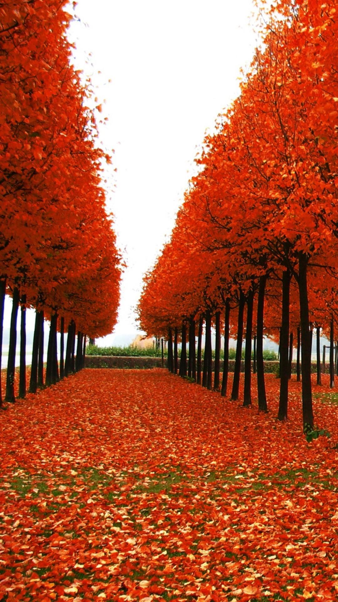 Beautiful Lake Reflection, <b>Autumn</b> HD desktop <b