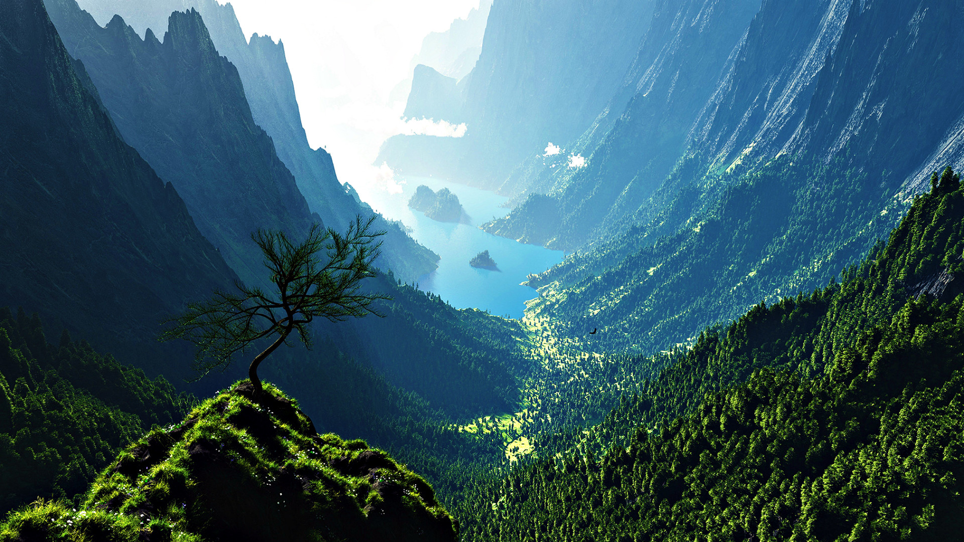 Mountain Valley Backgrounds
