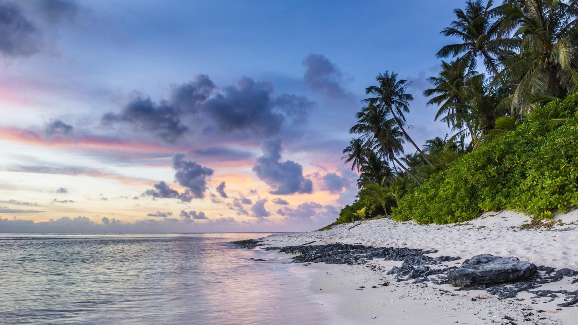 Preview wallpaper beach, palms, sand, ocean 1920×1080