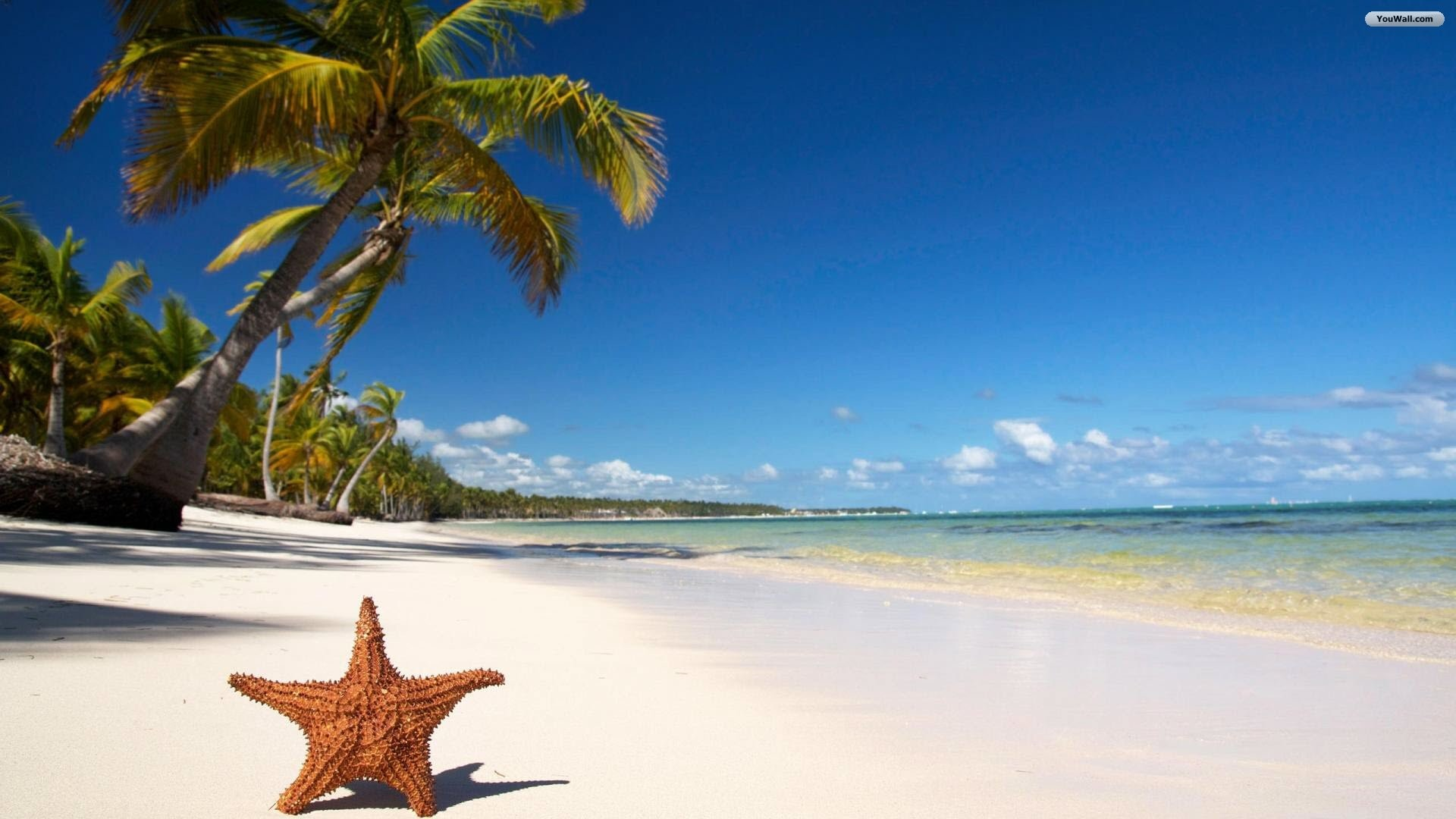 Beaches Wallpapers-72