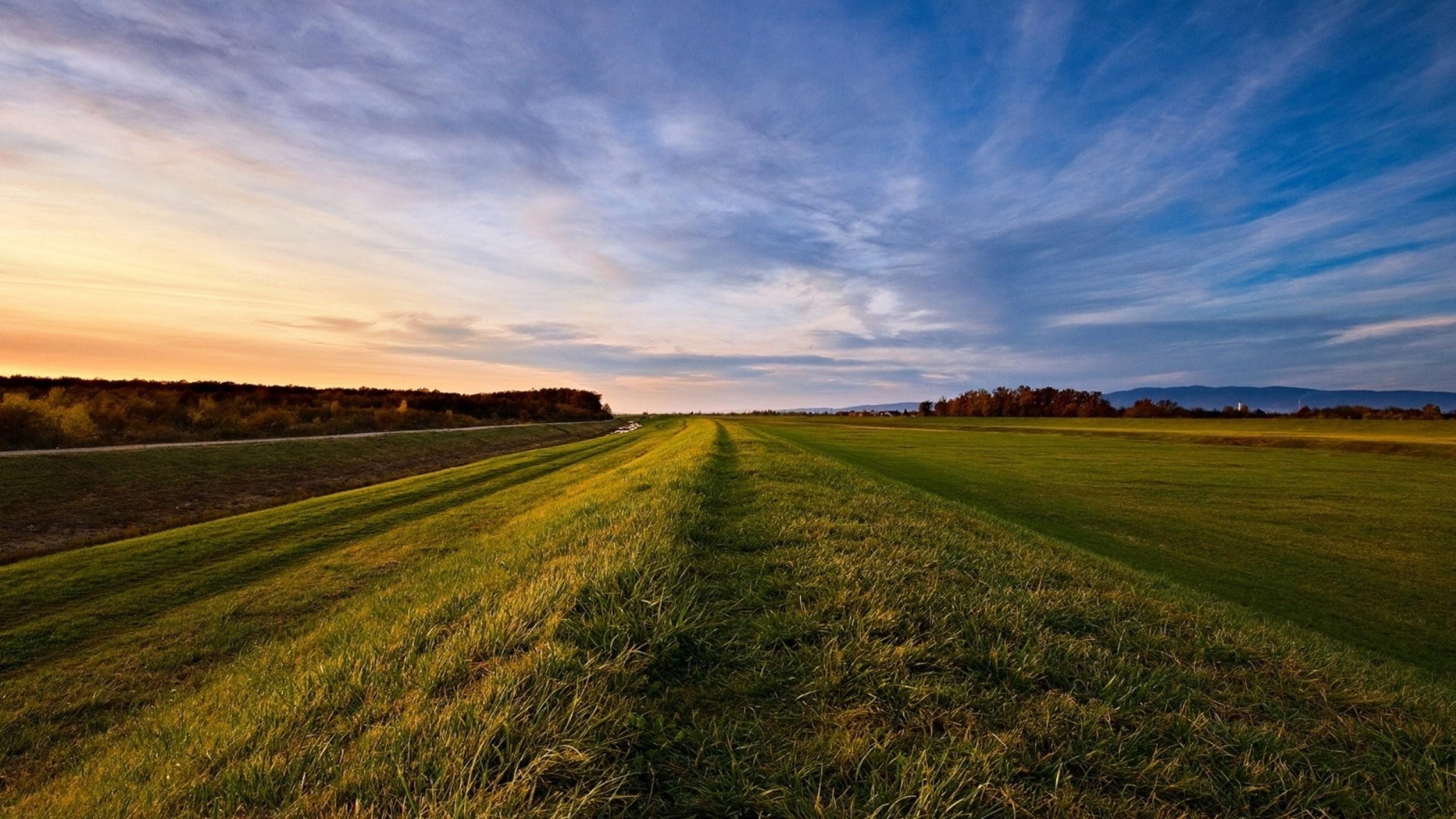 Wallpaper road, roadside, grass, field, open spaces
