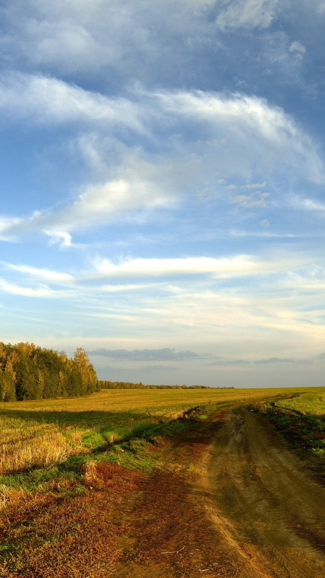 Preview wallpaper road, field, sky, clouds, blue, country, open spaces