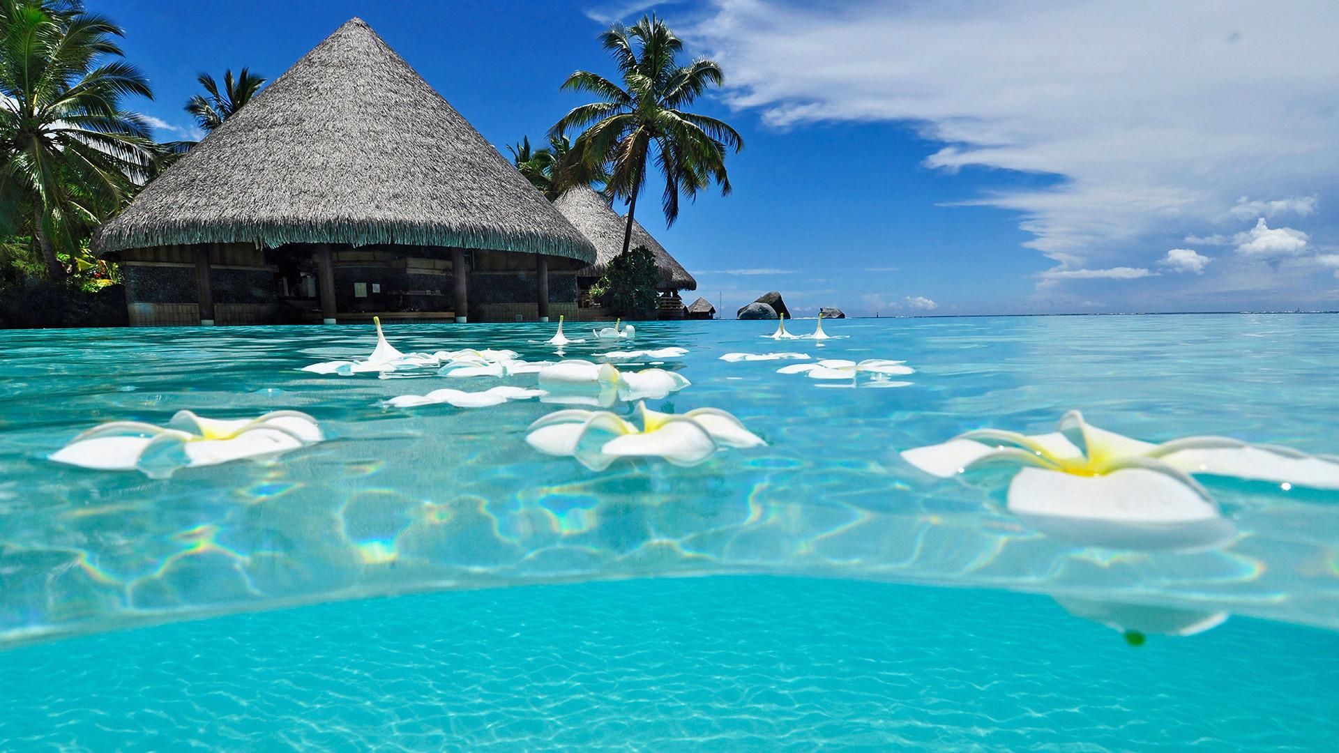 Paradise Beach – – 16:9