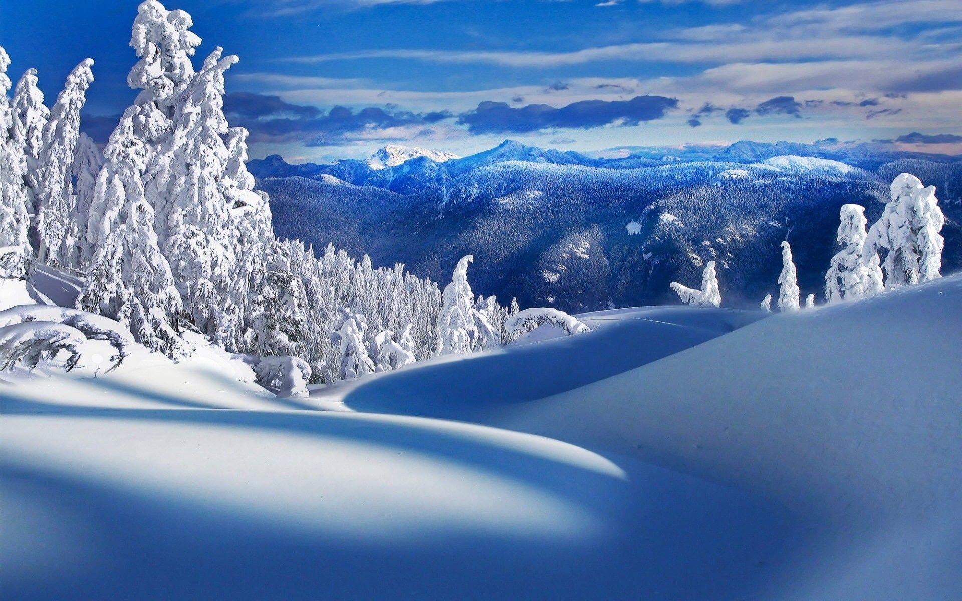Free Winter Snow Scenes Wallpaper 1920×1200