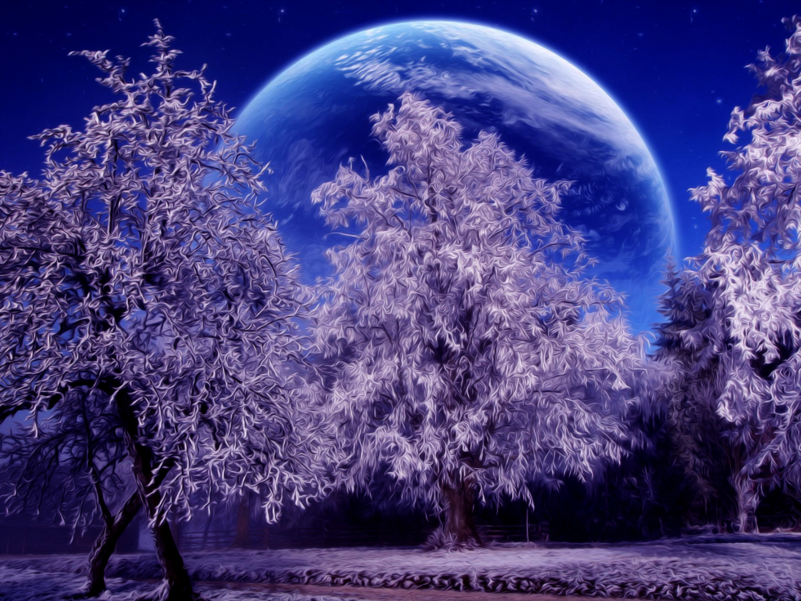 Winter | Free Desktop Wallpapers for HD, Widescreen and Mobile | Page .