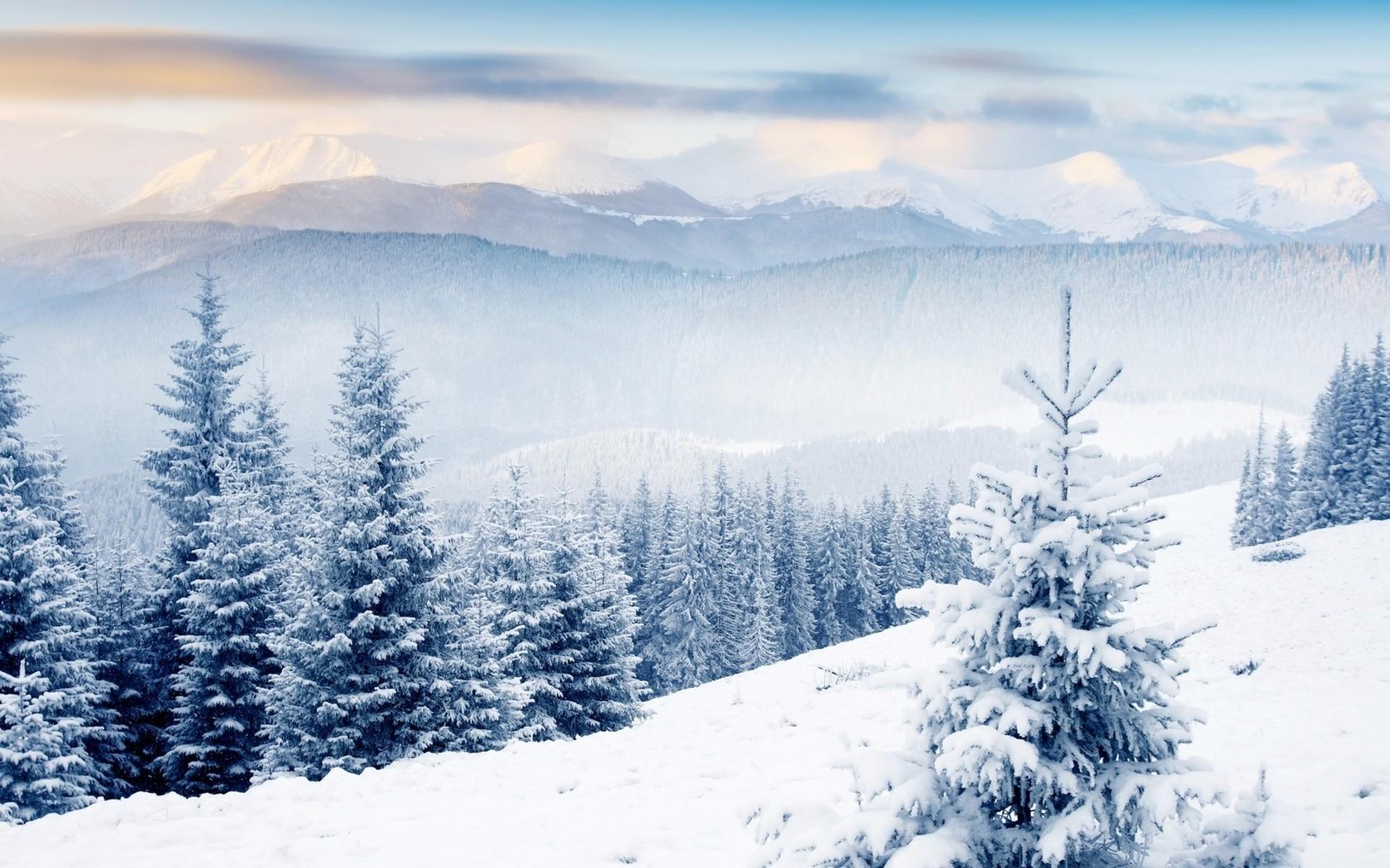 Mountain Snow Scenes Winter scenes