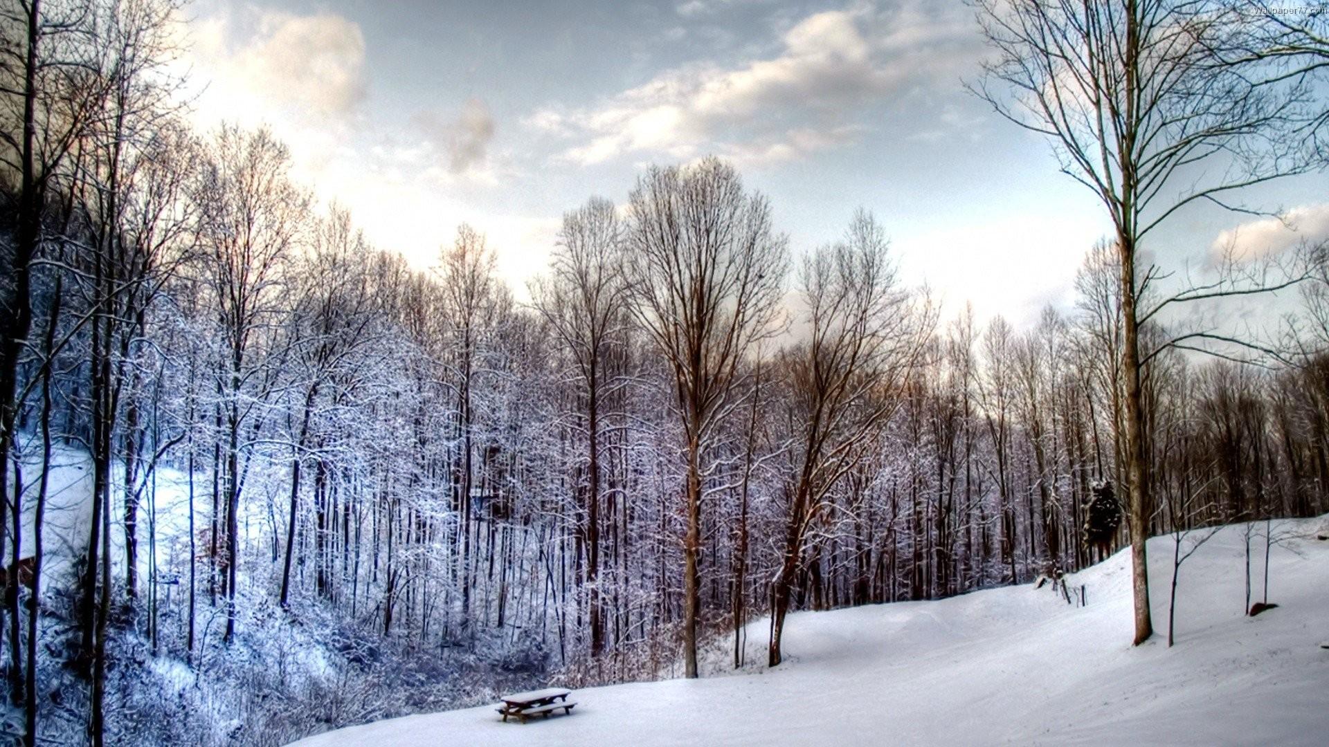 Winter Snow Scenes Wallpapers – Wallpaper Cave