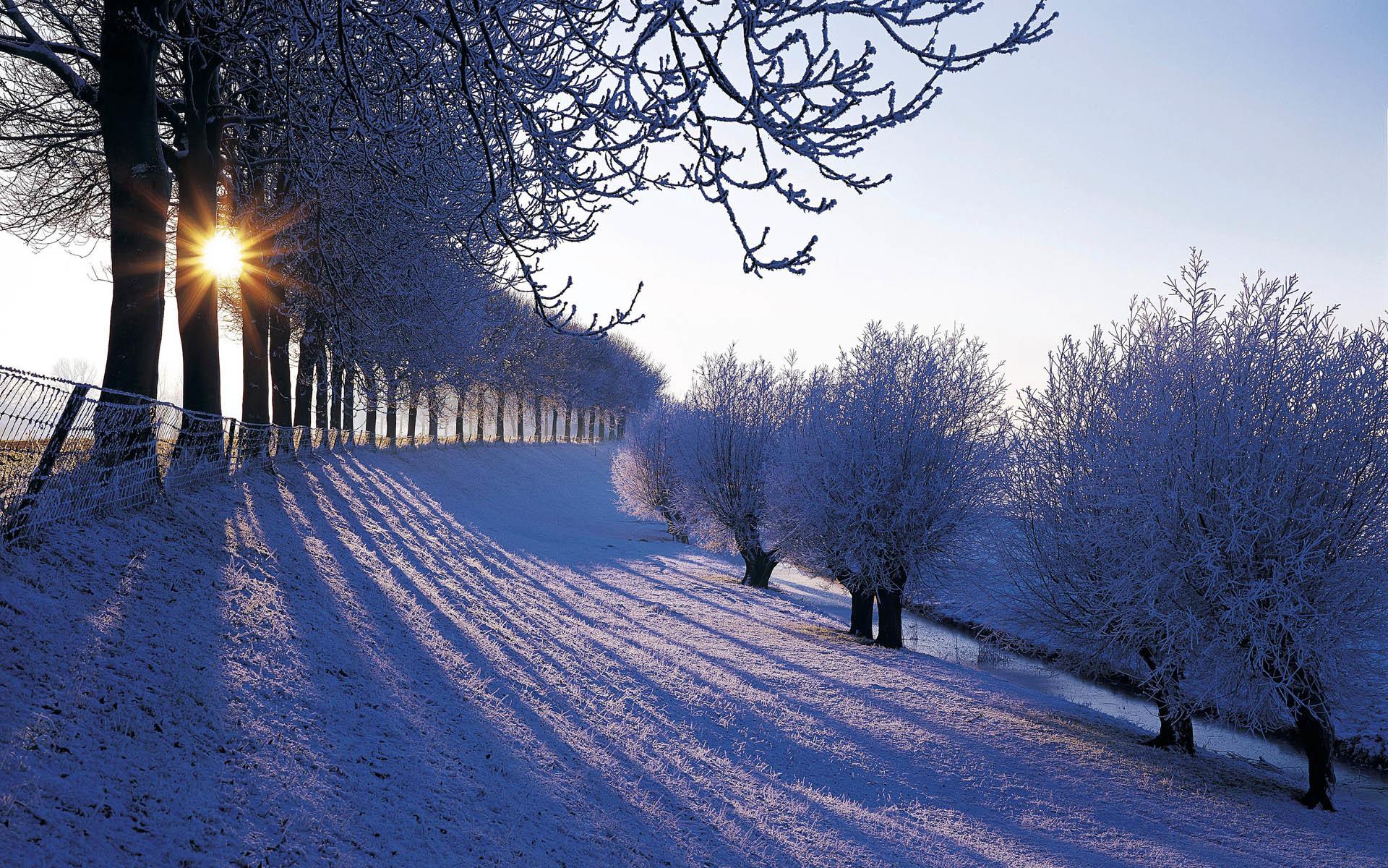 Beautiful winter scenery Winter Wallpaper Winter snowfall beautiful  Wallpaper Beauty of nature in Winter Sunlight in .