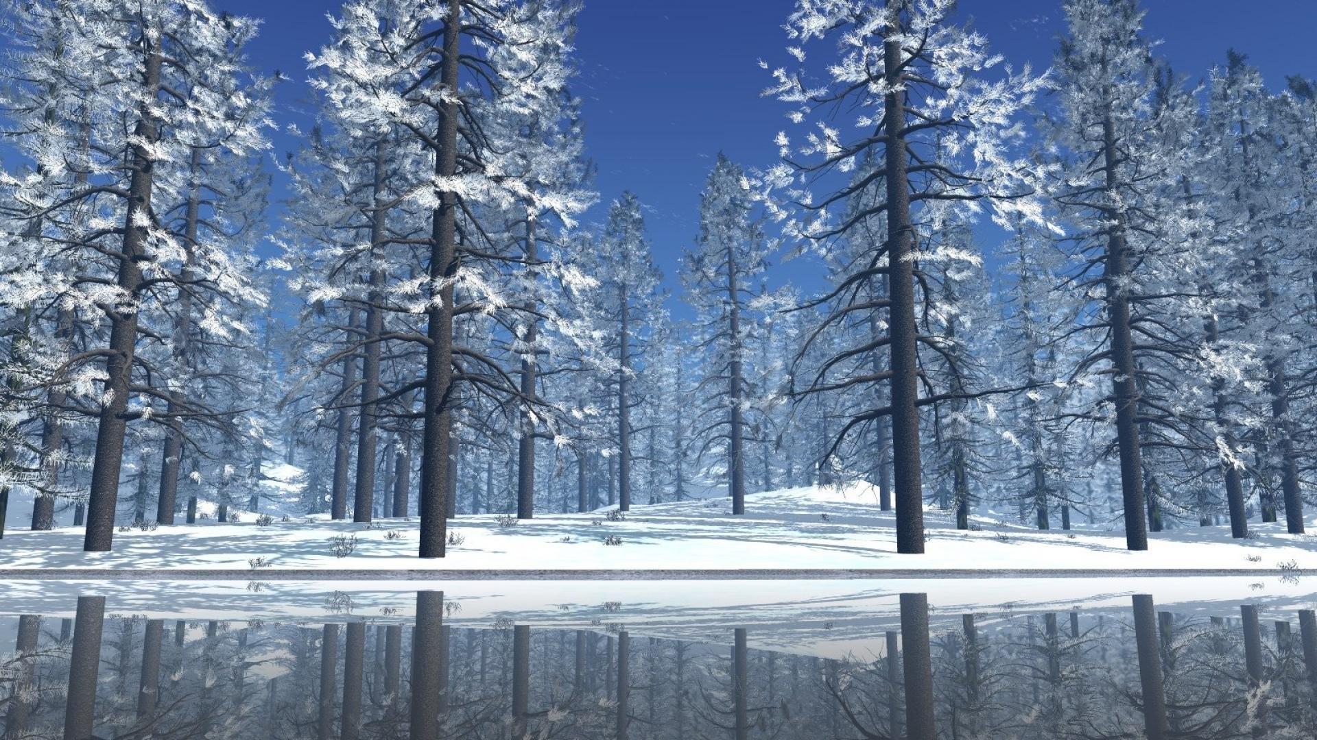 Christmas Snow Scene