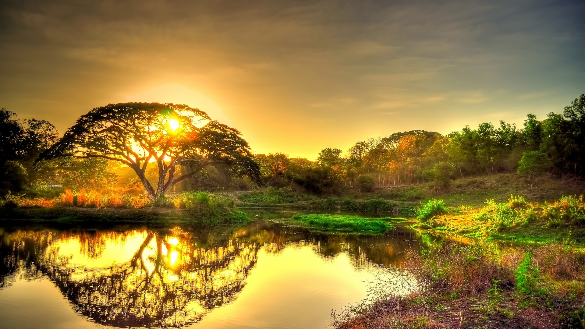 Wallpaper sunset, pond, trees, landscape