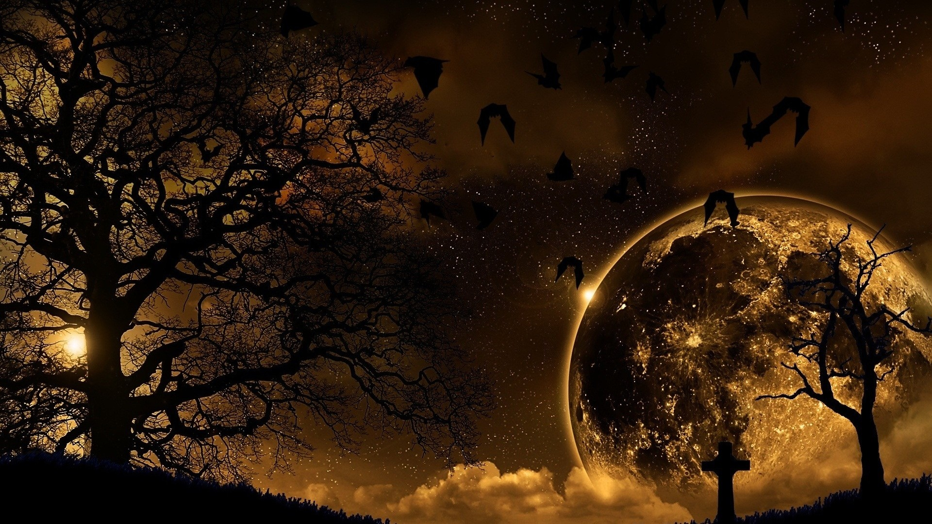 Preview wallpaper trees, nature, night, planet, birds, landscape 1920×1080