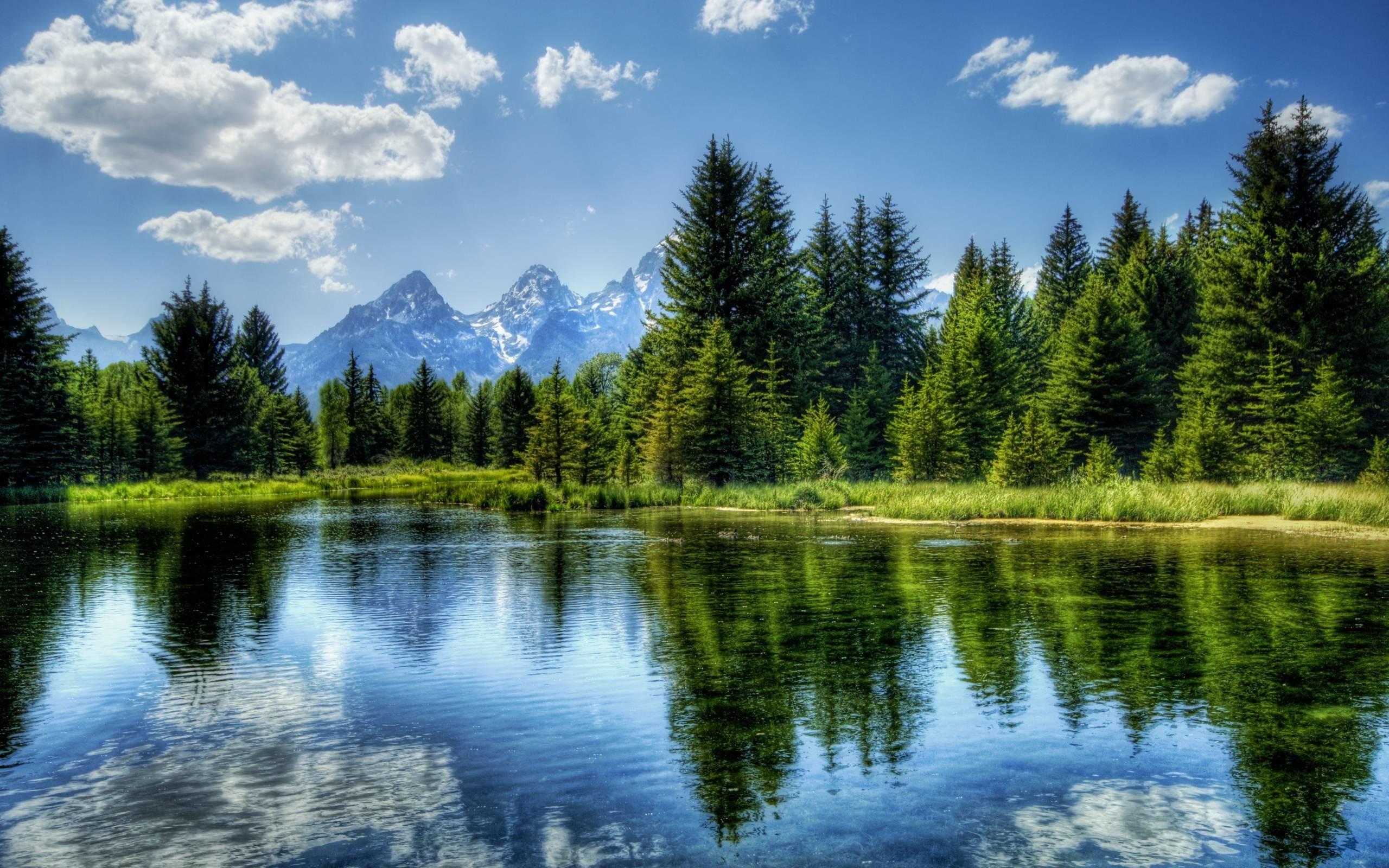Stunning Landscape Background